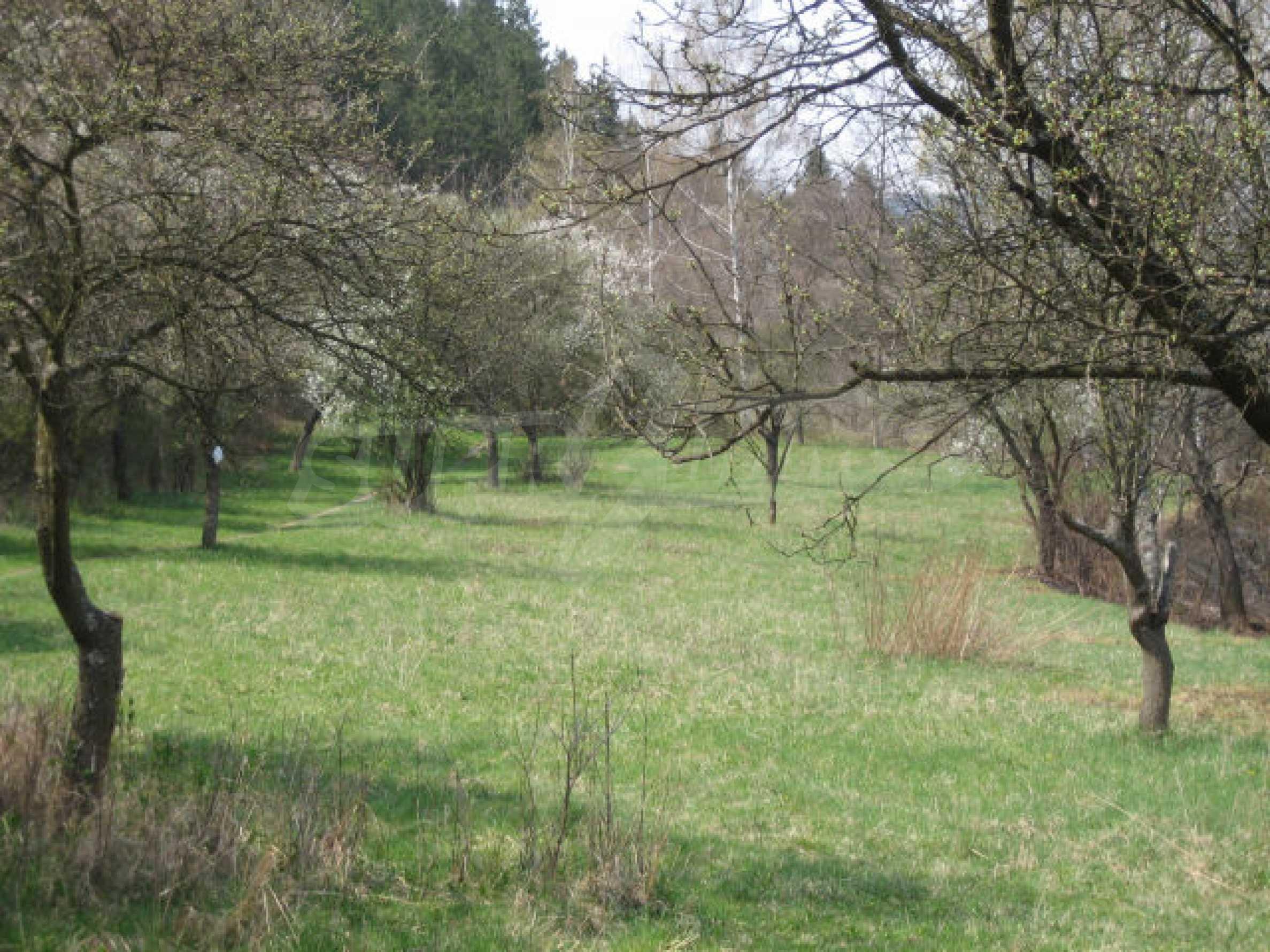 Сельскохозяйственная земля вблизи г. София 1