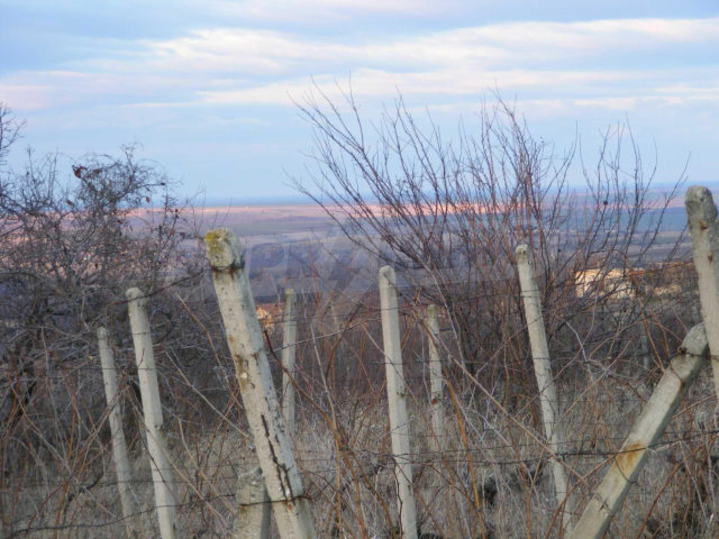 Сельскохозяйственная земля вблизи г. Монтана 1