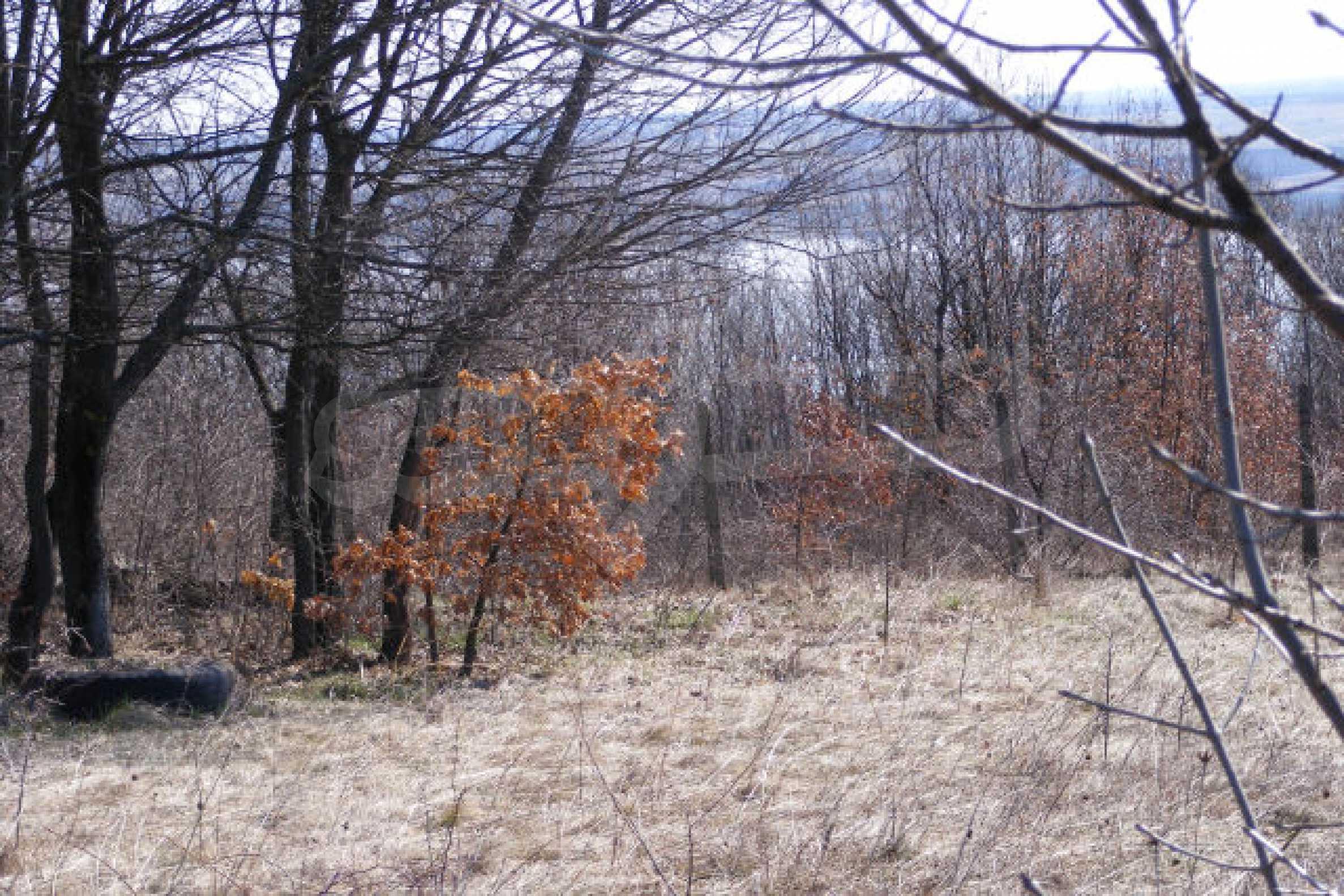 Сельскохозяйственная земля вблизи г. Монтана 5