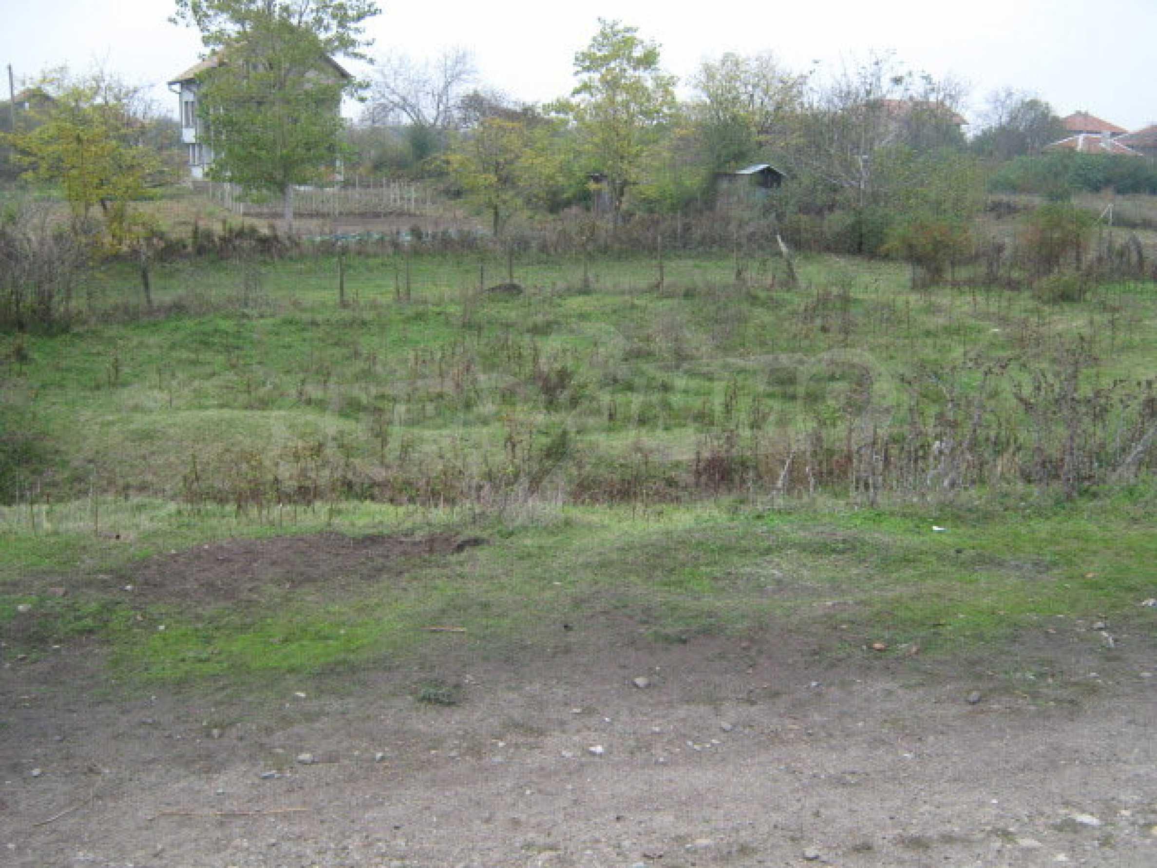 Земельный участок вблизи г. Видин 6