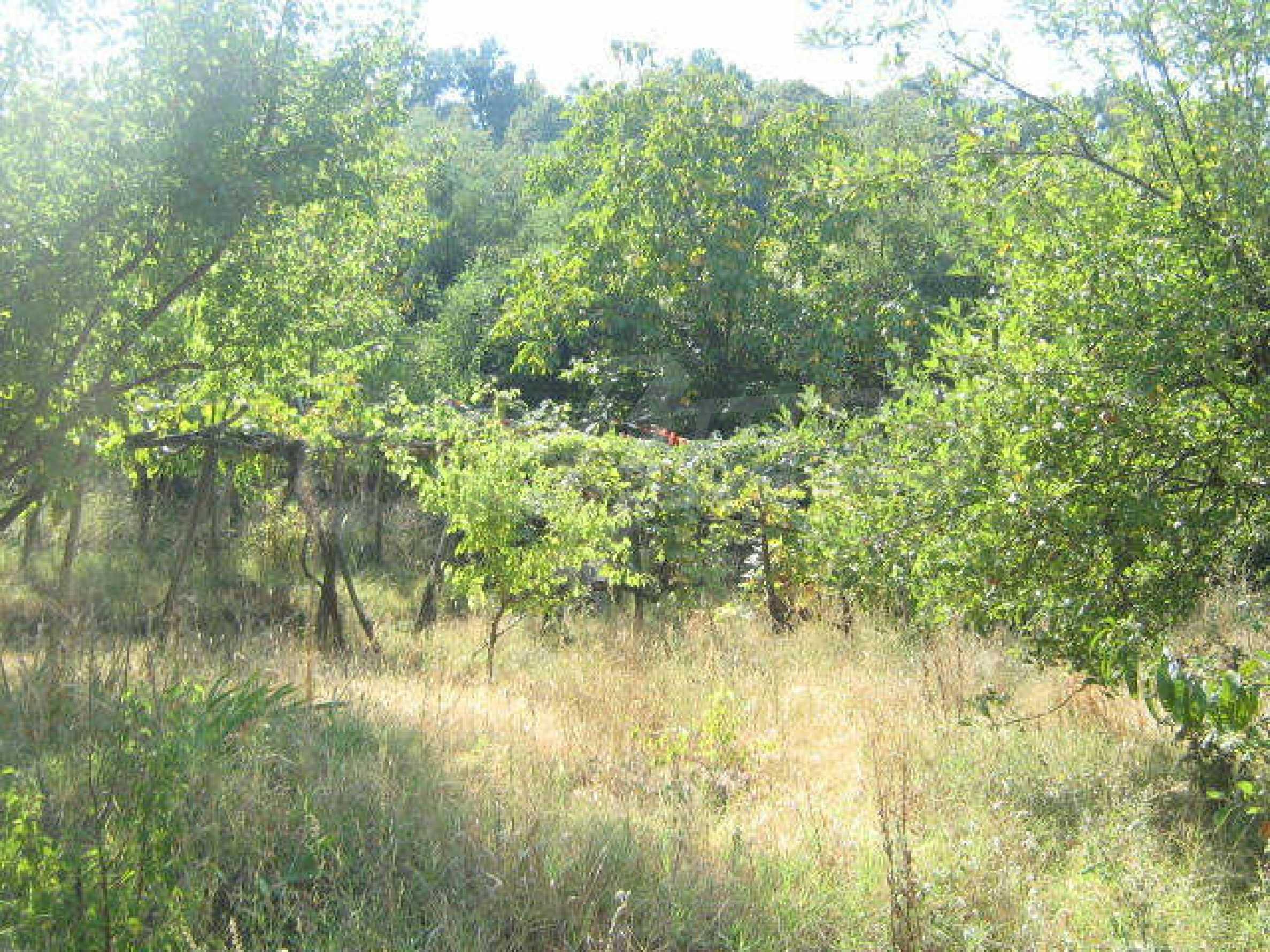 Grundstück in der Nähe von Vidin