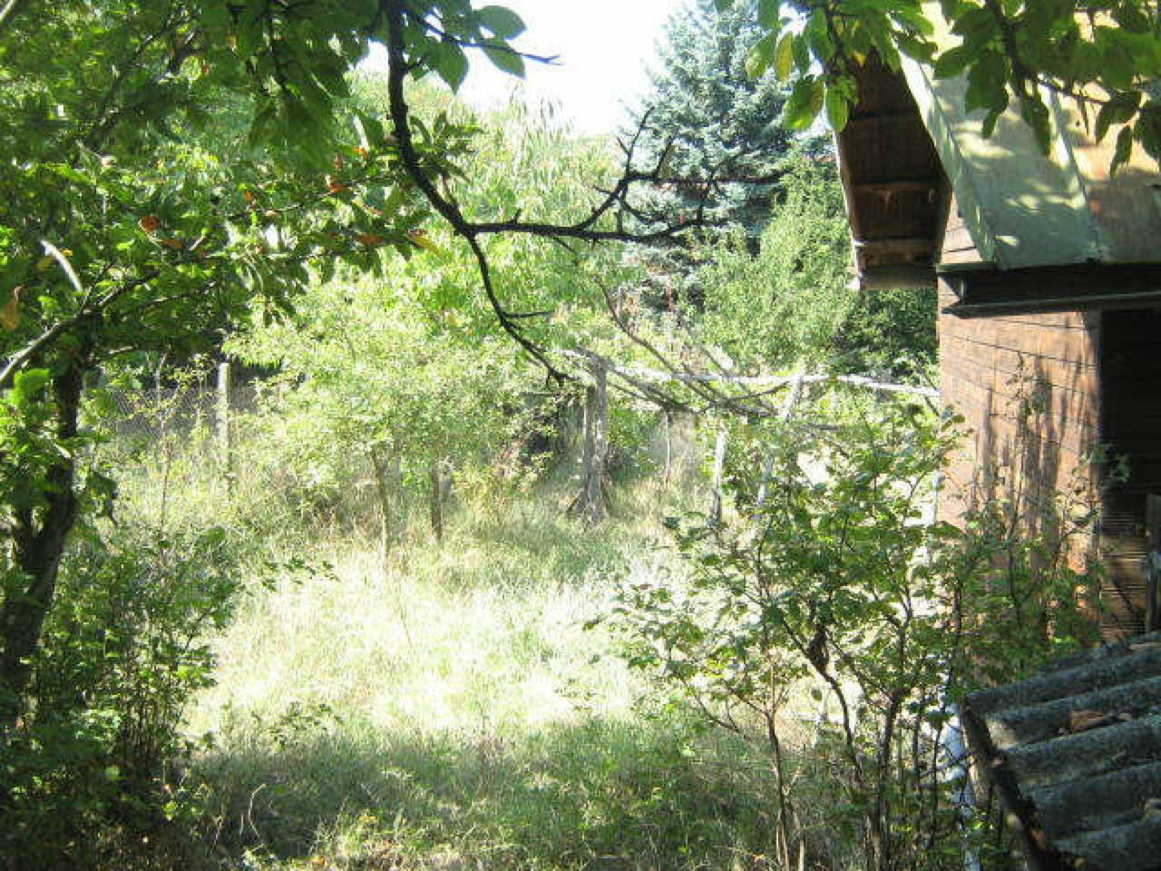 Grundstück in der Nähe von Vidin 9