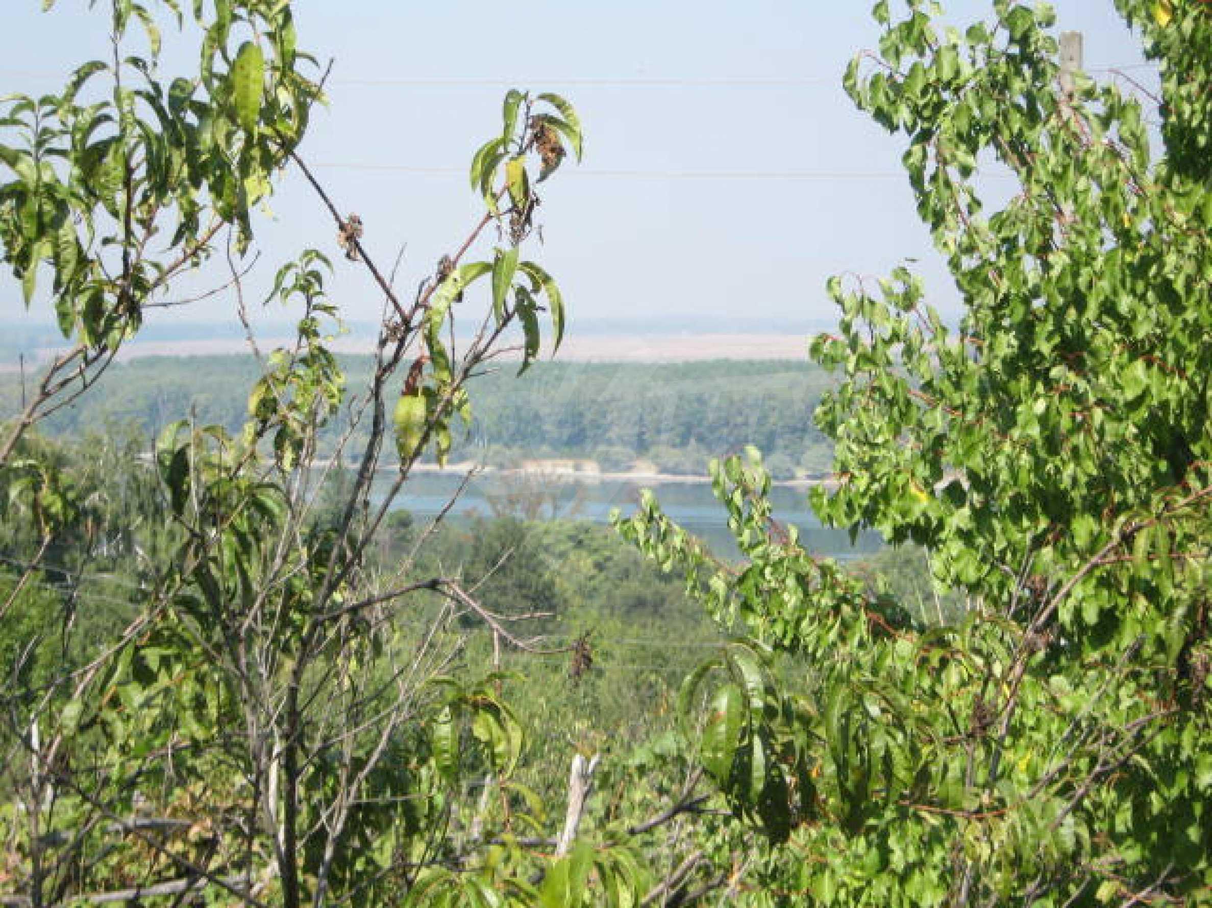 Grundstück in der Nähe von Vidin 5