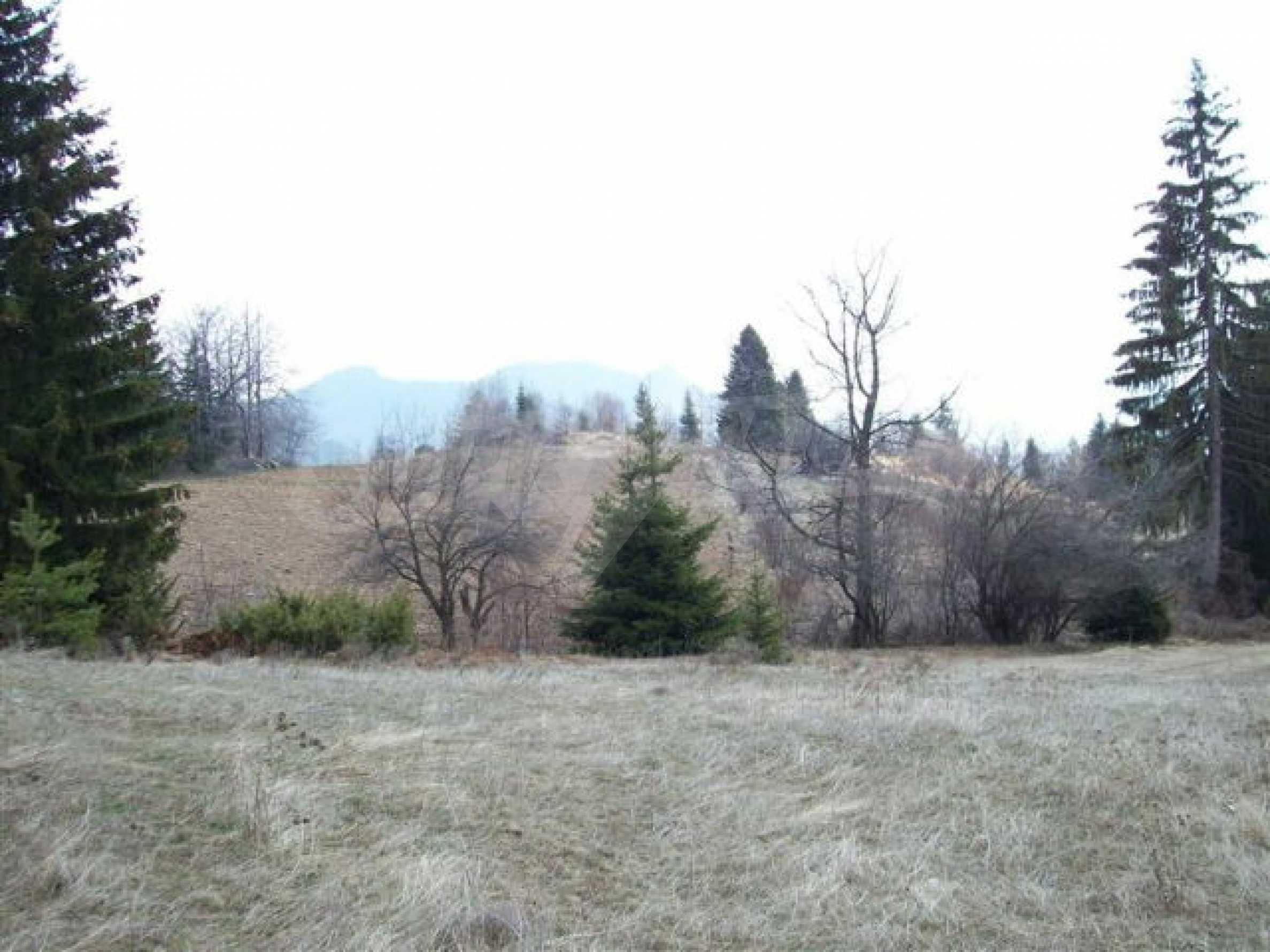 Земельный участок вблизи г. Смолян