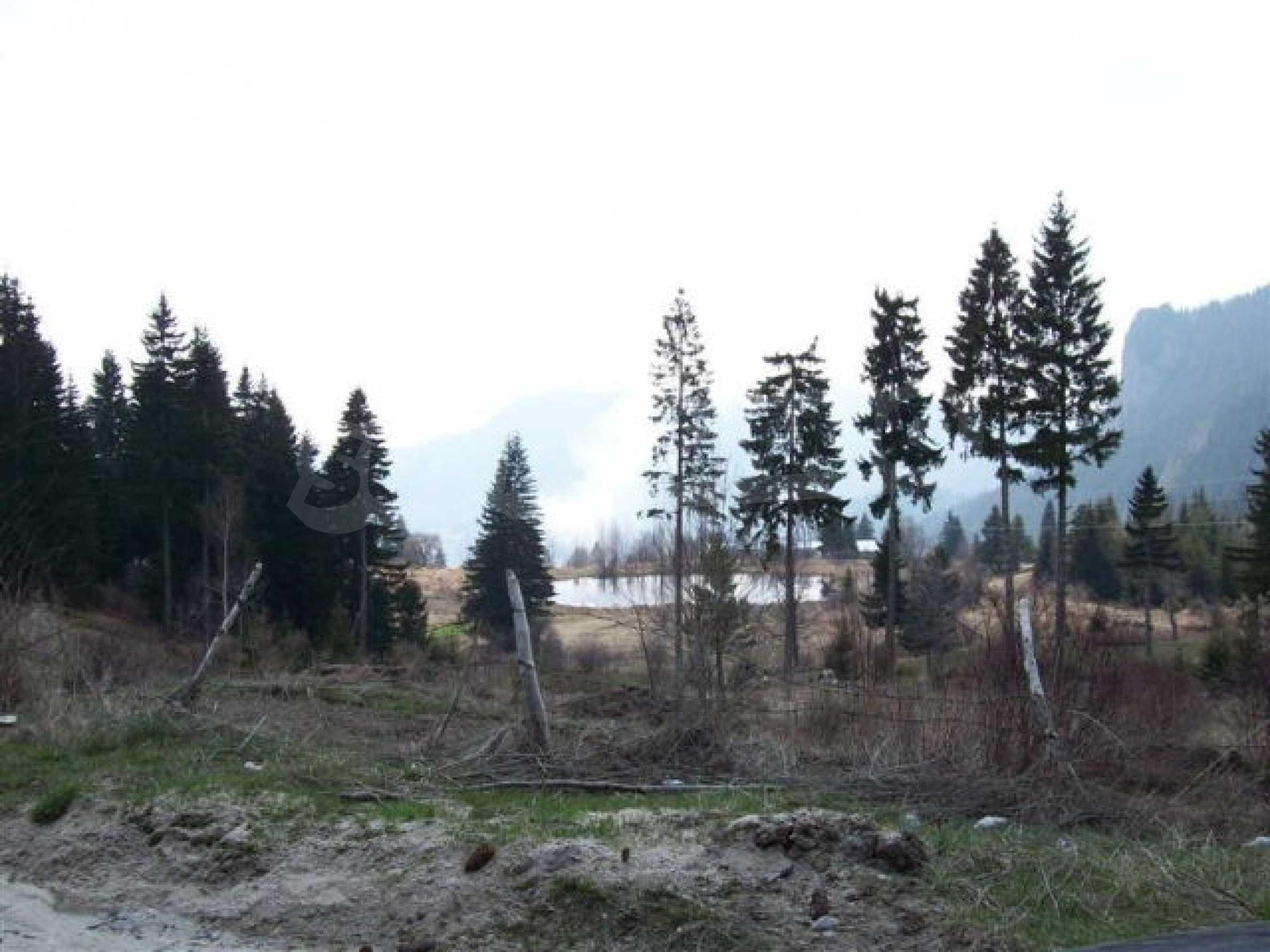 Земельный участок вблизи г. Смолян 11