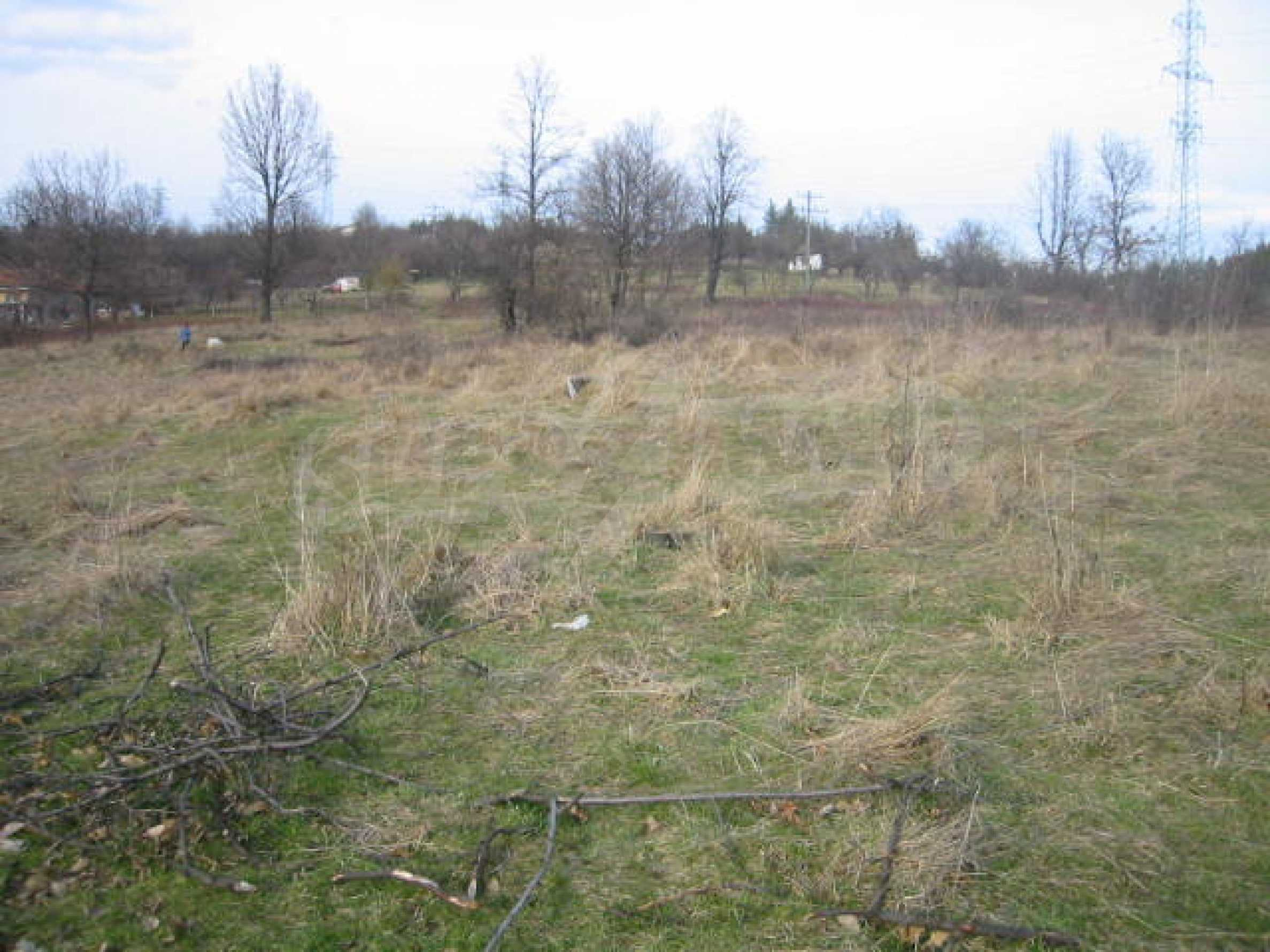 A plot of land