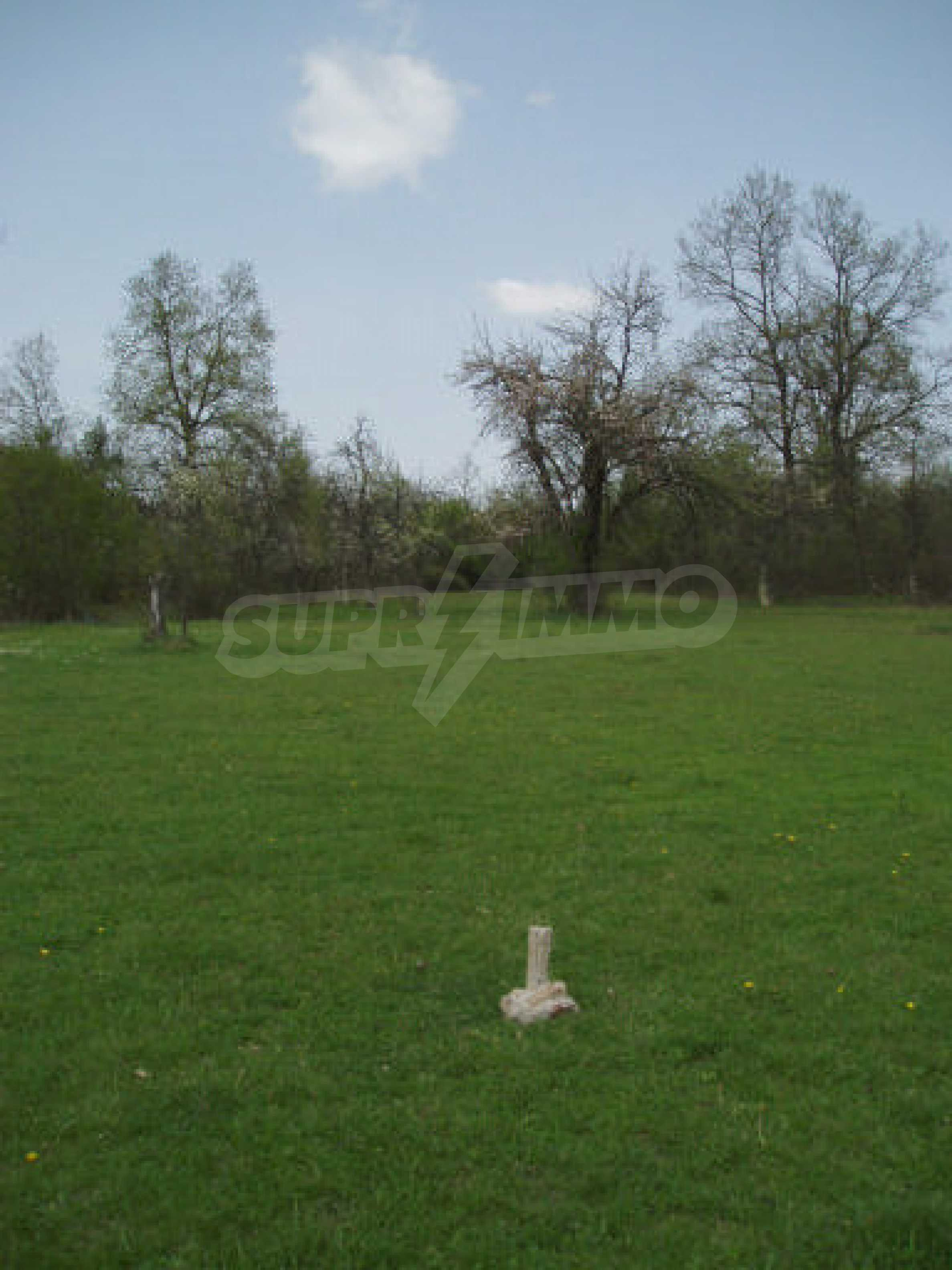 Big plots of land with great potential 7