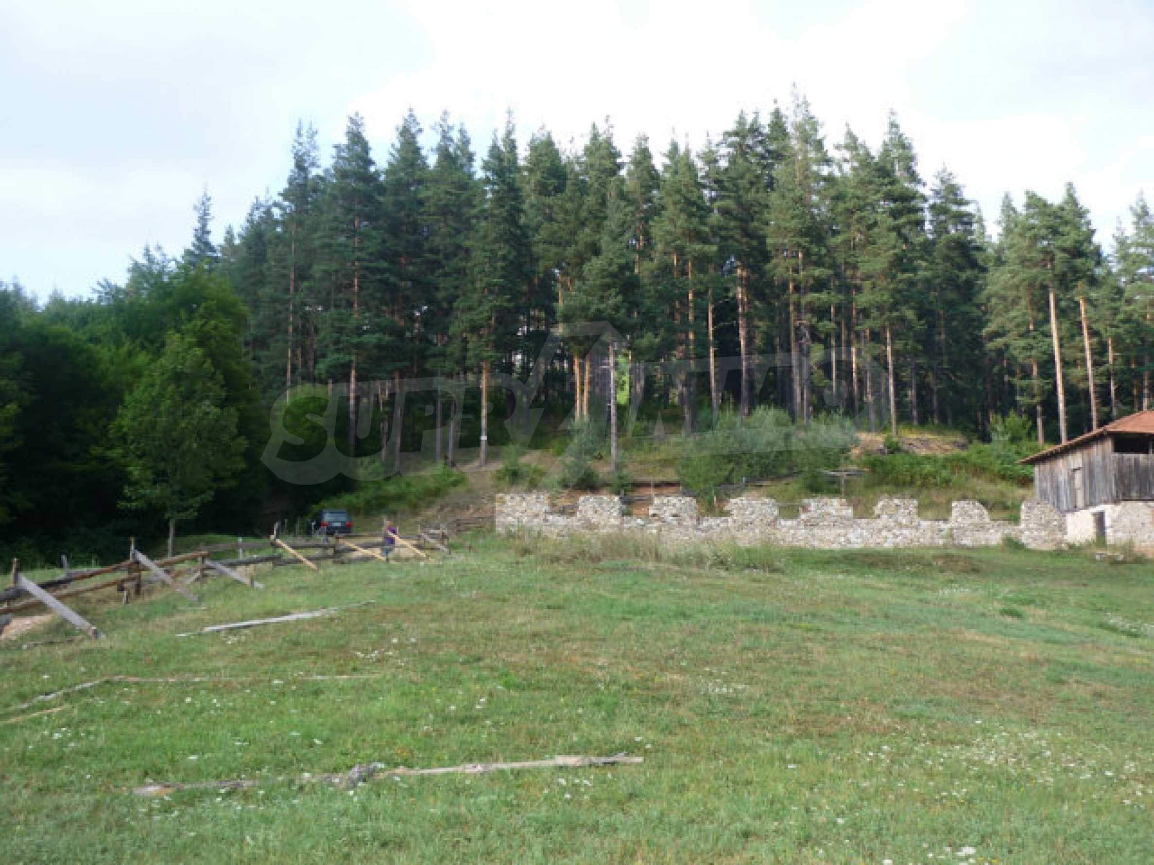 Large regulated plot of land in a quiet area near Smolyan 7