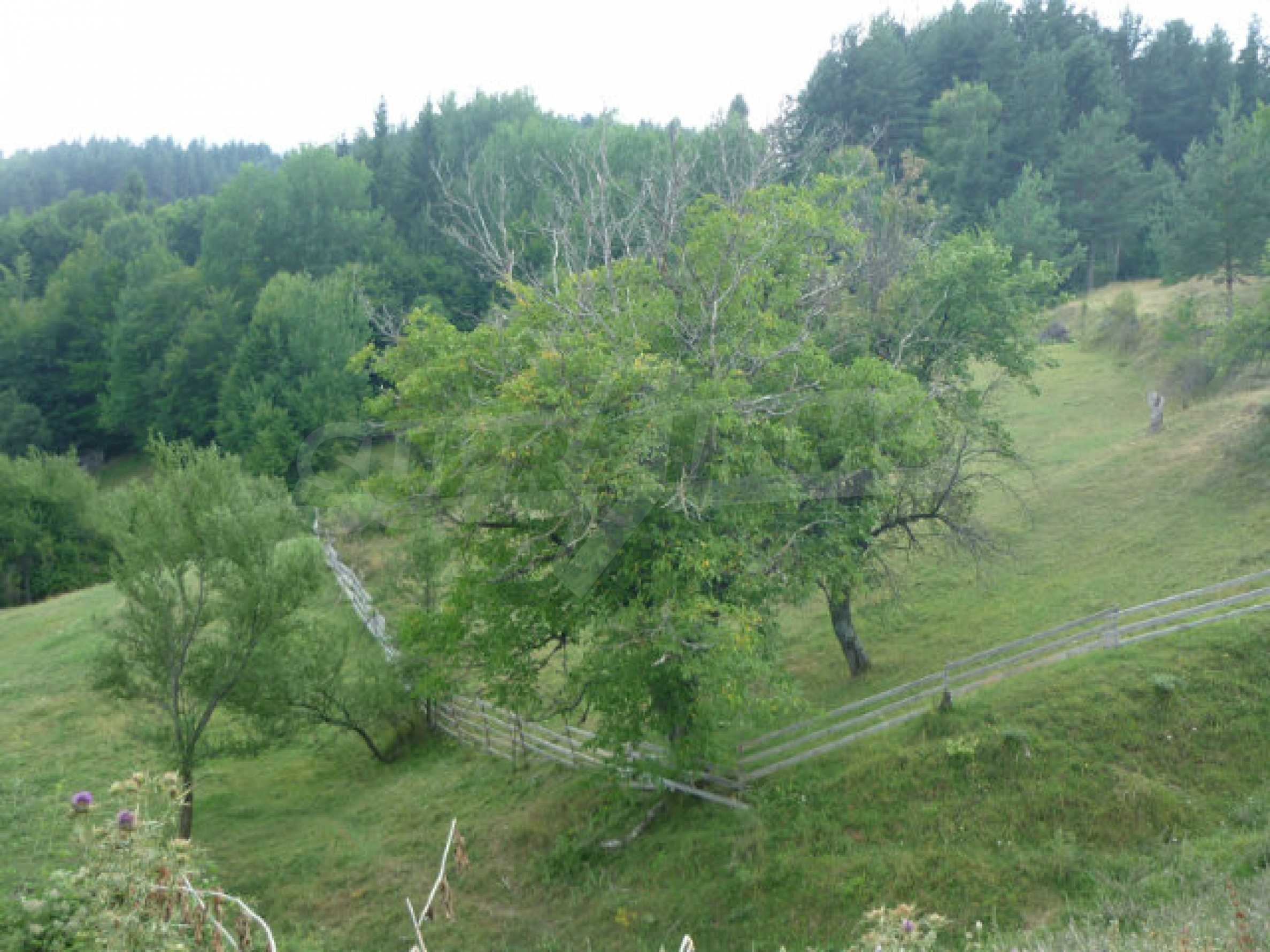 Spacious regulated plot of land 15 km from the resort town of Smolyan 1