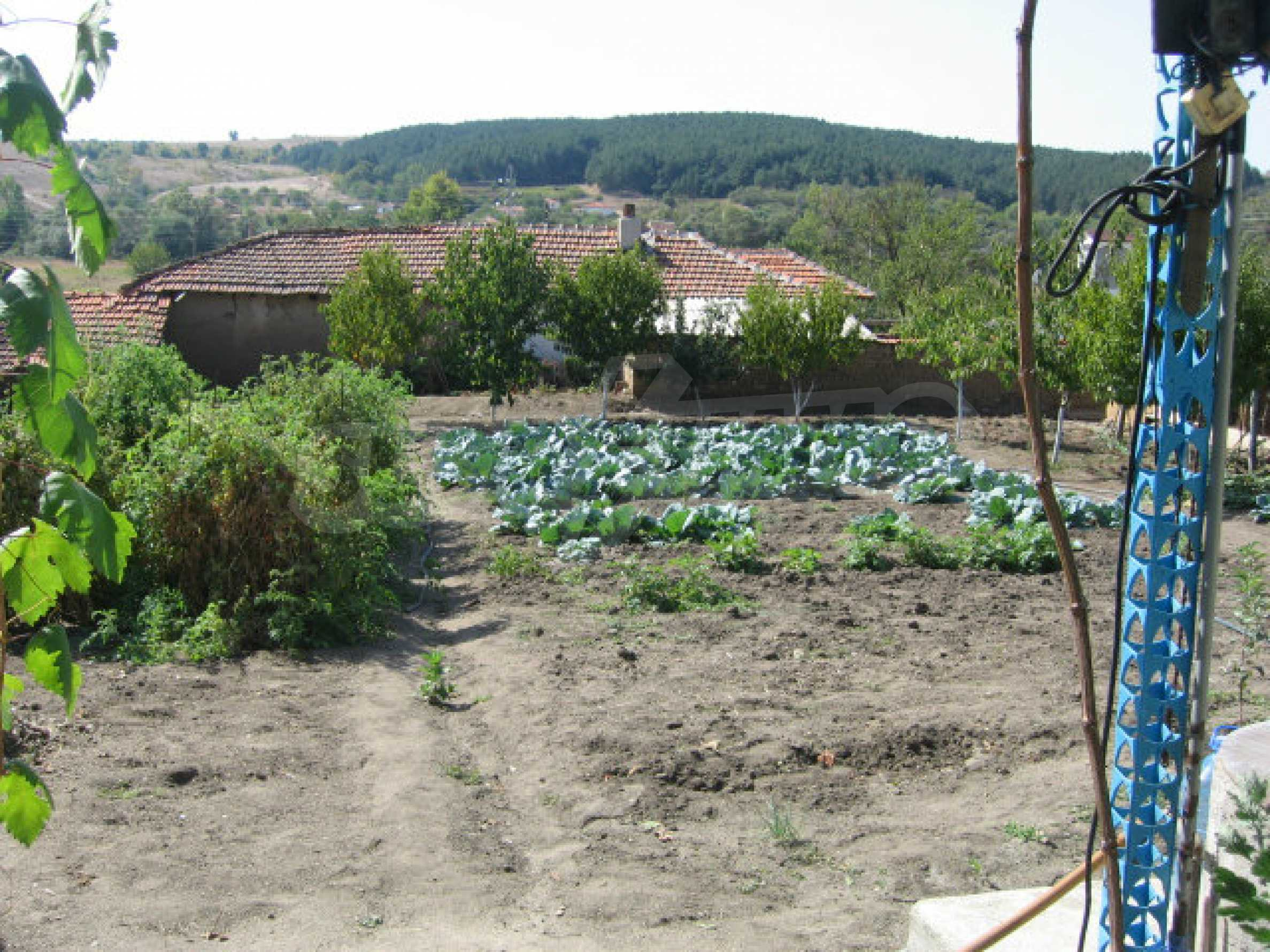 Großes und solides Haus mit einem Garten in einer schönen ländlichen Gegend in der Nähe von Topolovgrad und Elhovo 24