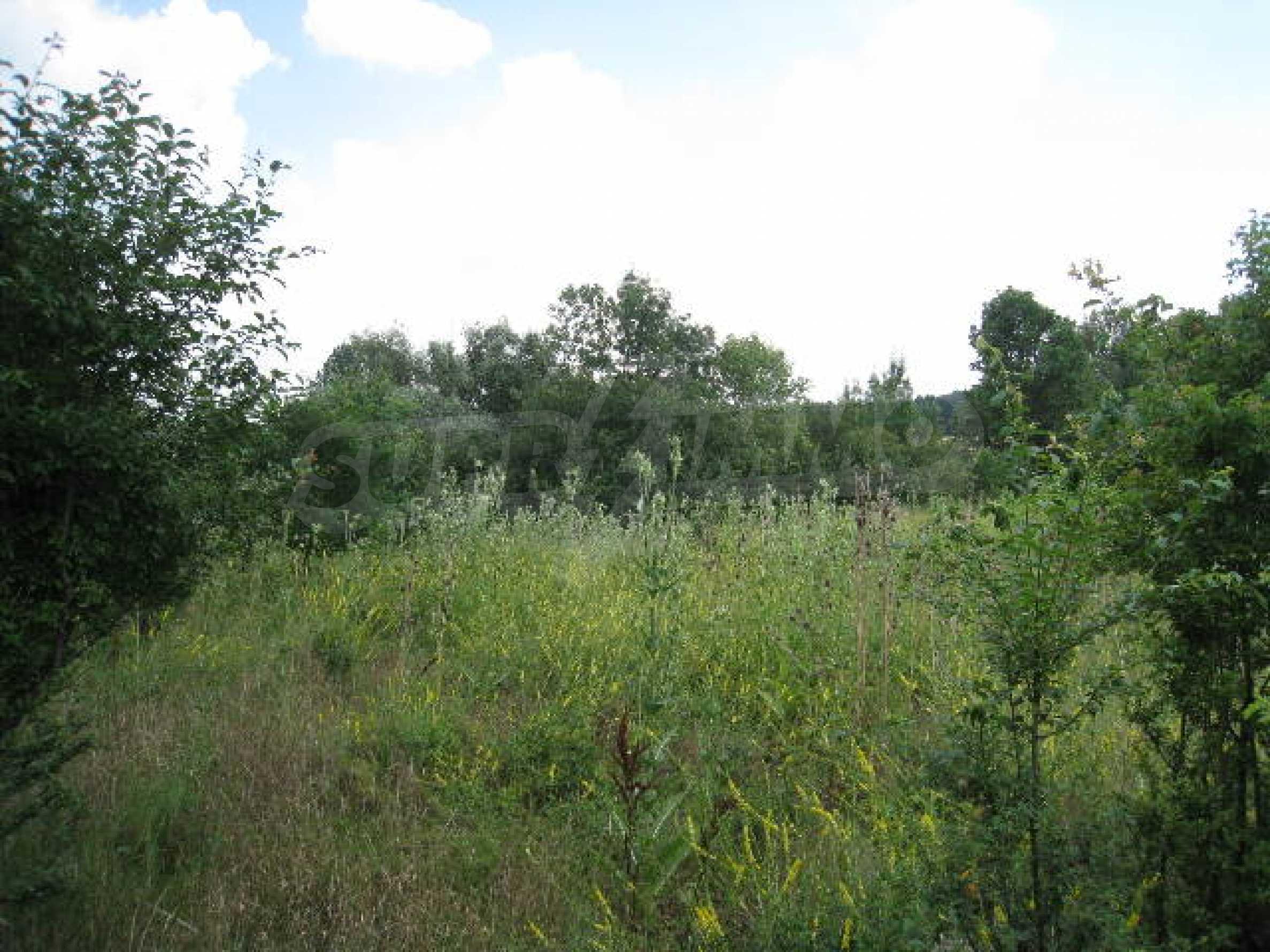Продажа земли вблизи Софии 1