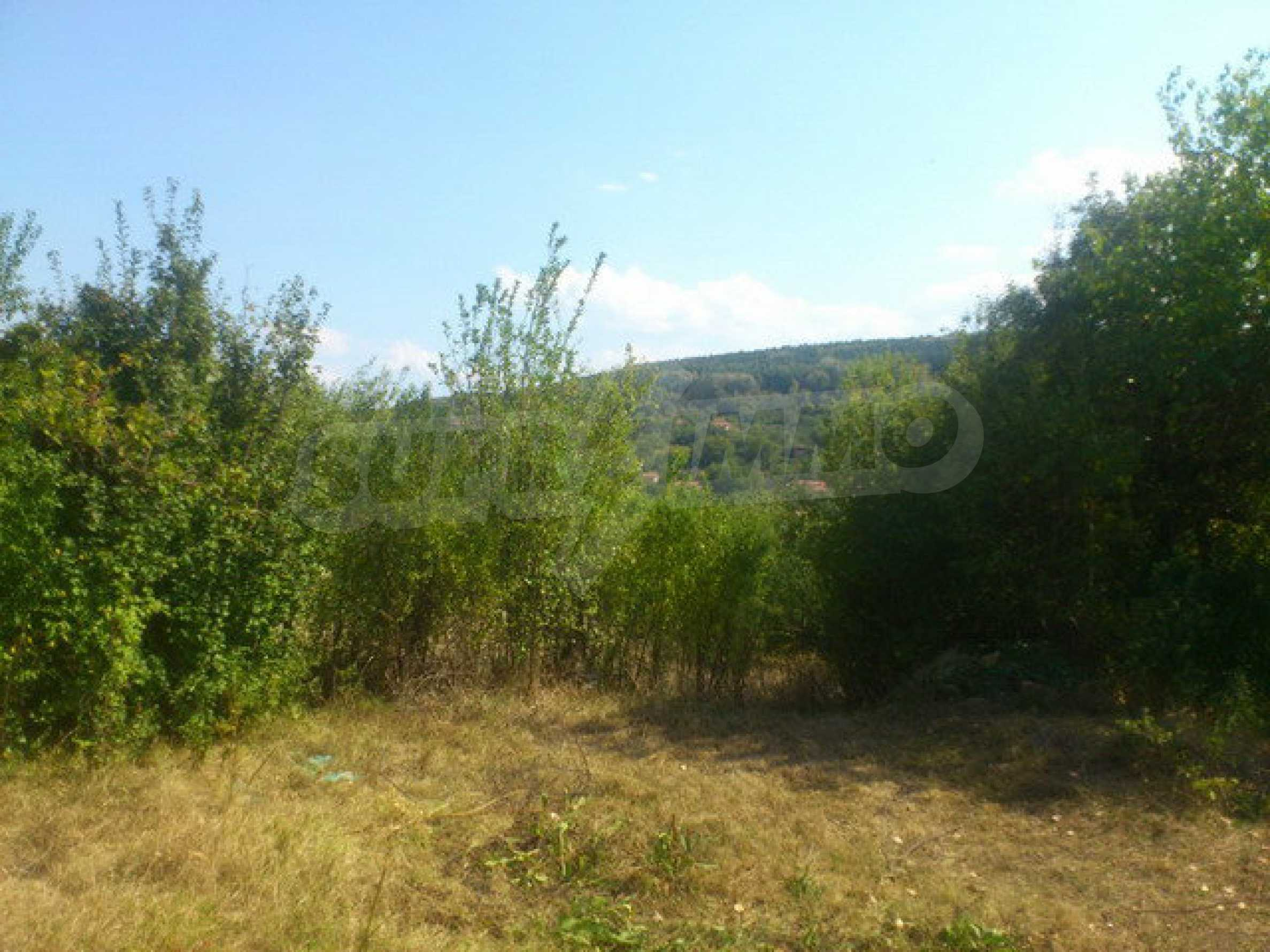 Plot of land in a village 30 km. from Veliko Tarnovo