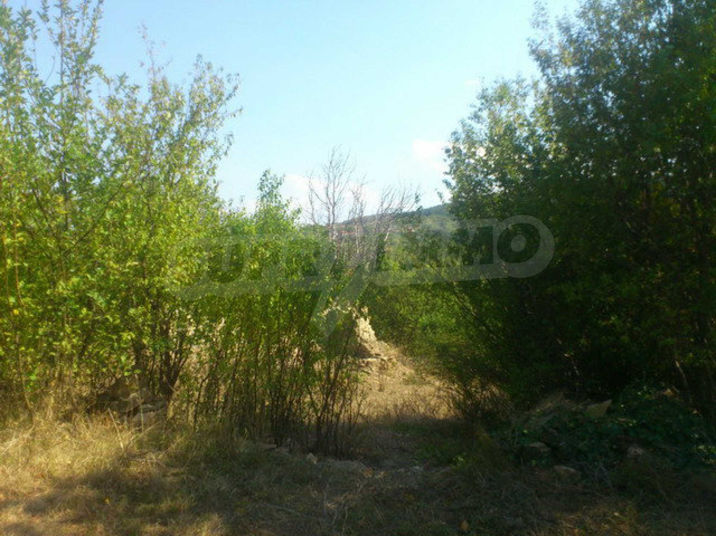 Plot of land in a village 30 km. from Veliko Tarnovo 10