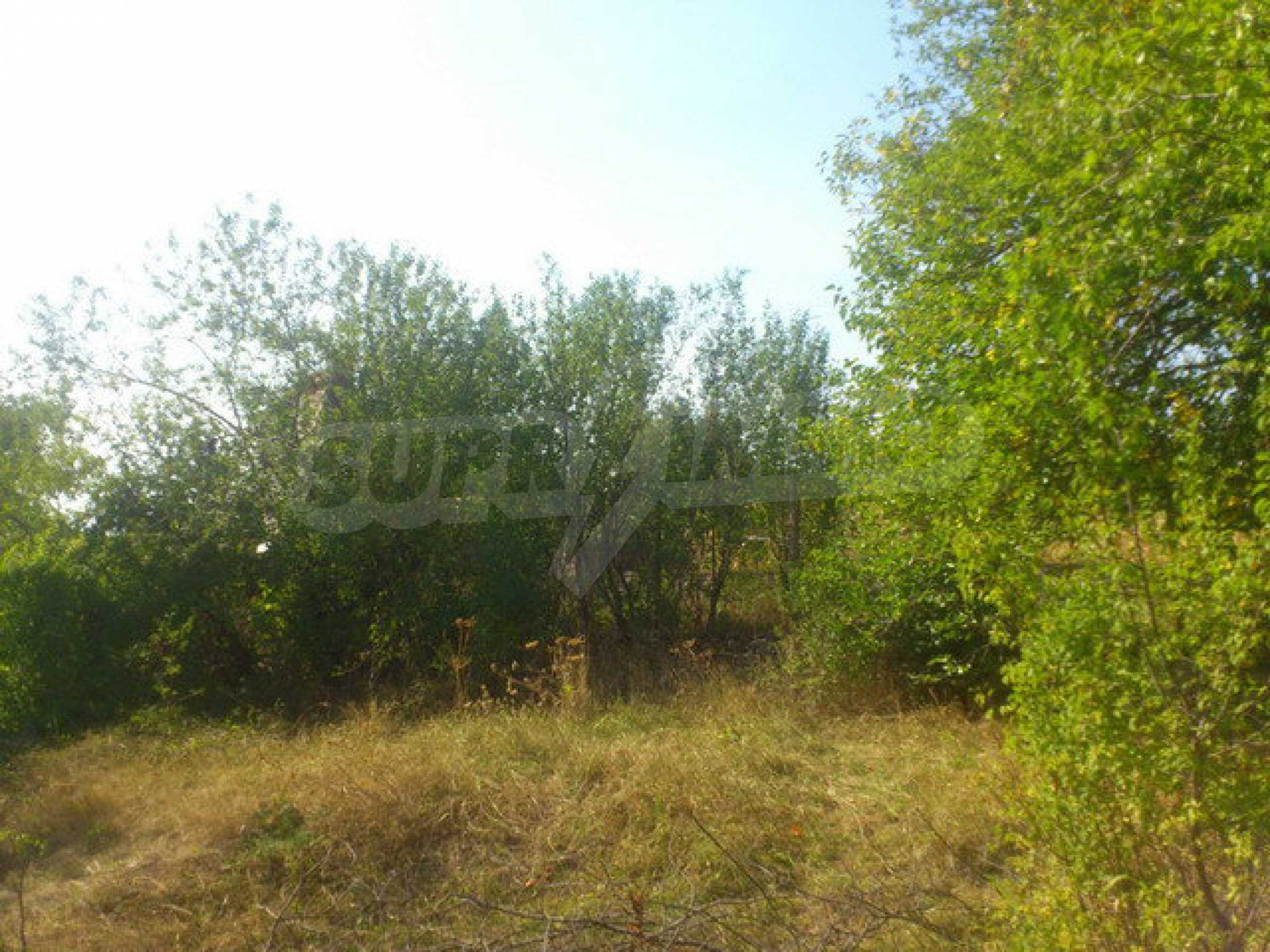 Plot of land in a village 30 km. from Veliko Tarnovo 12