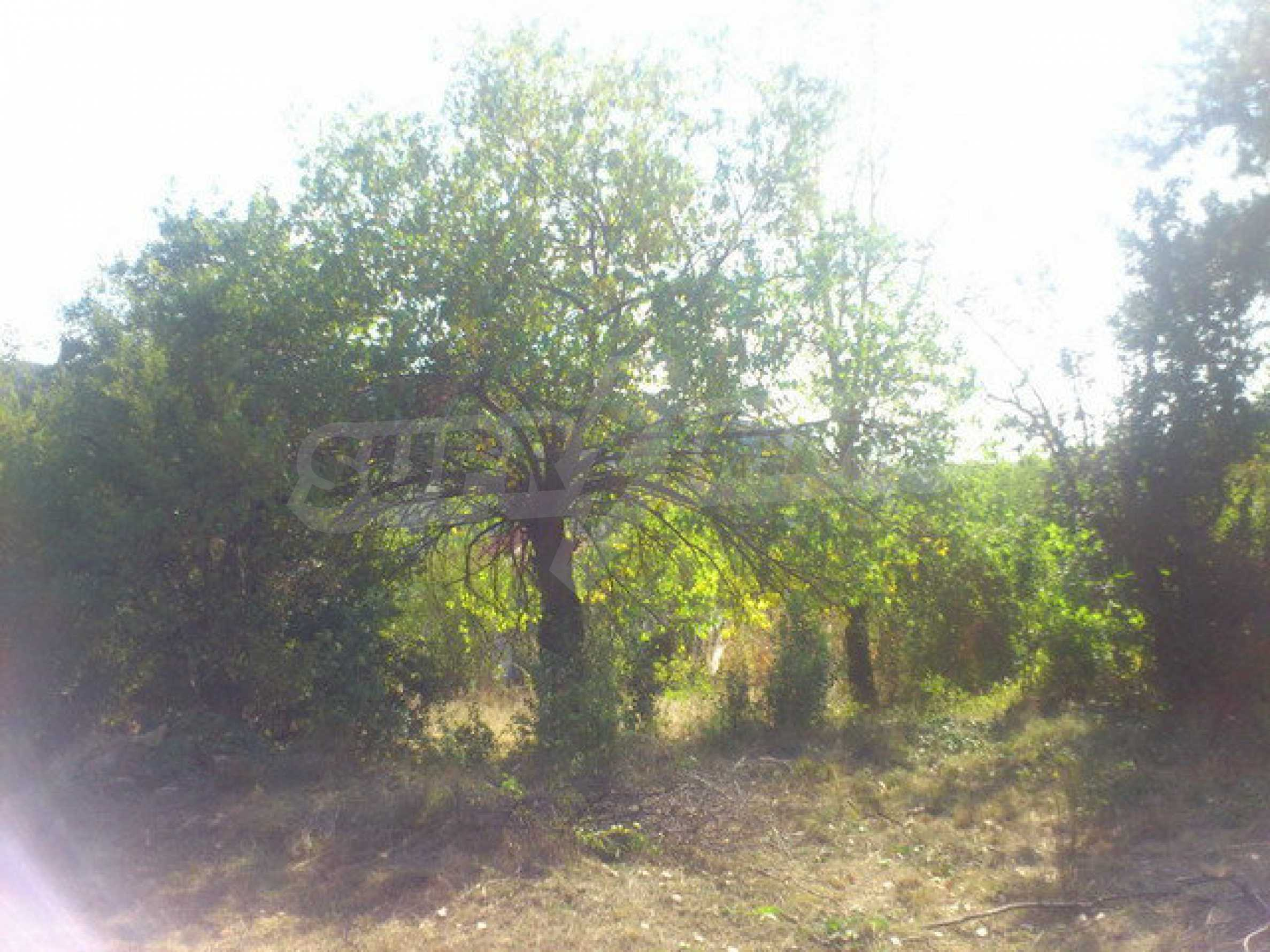 Plot of land in a village 30 km. from Veliko Tarnovo 14