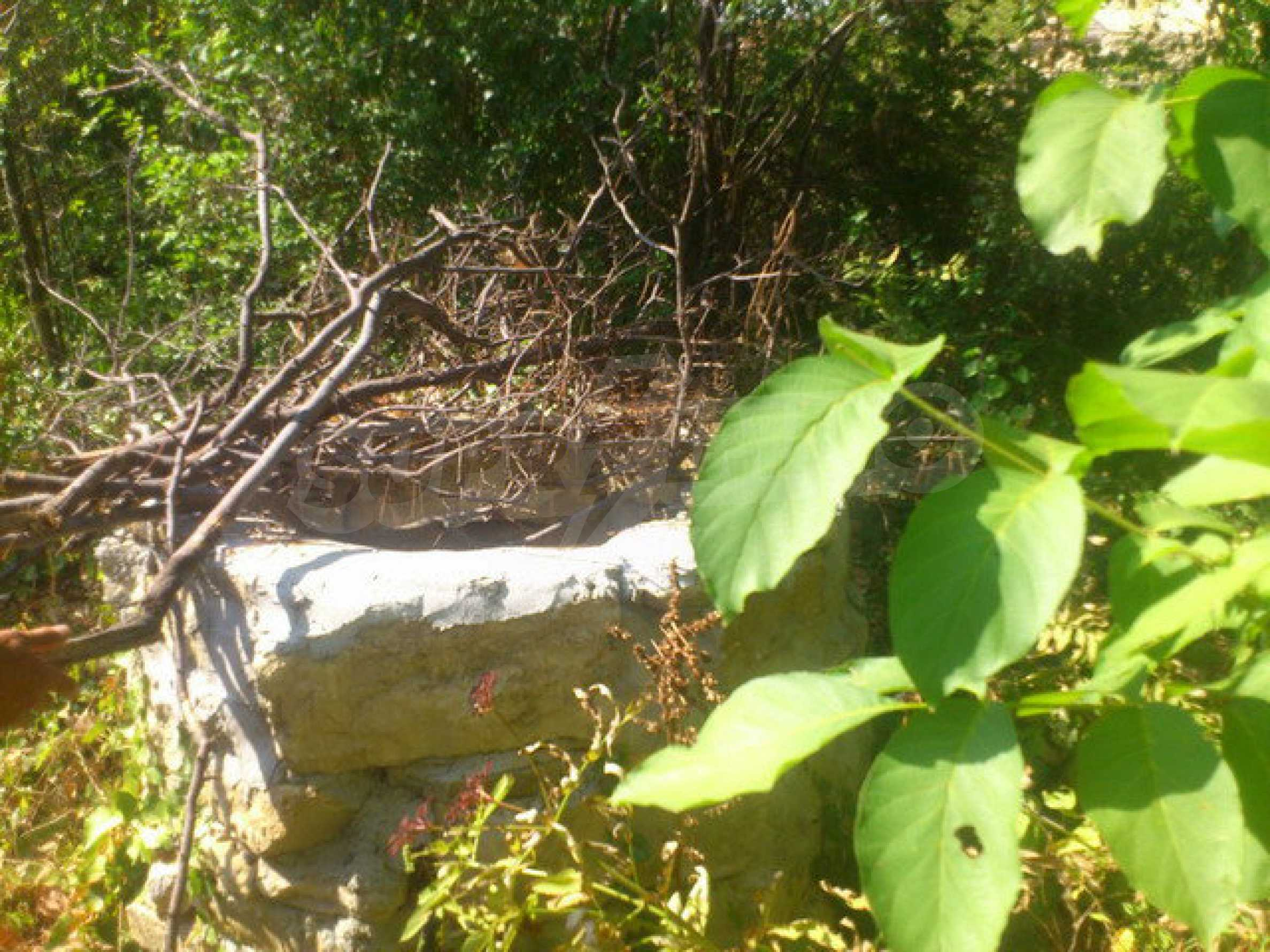 Plot of land in a village 30 km. from Veliko Tarnovo 16