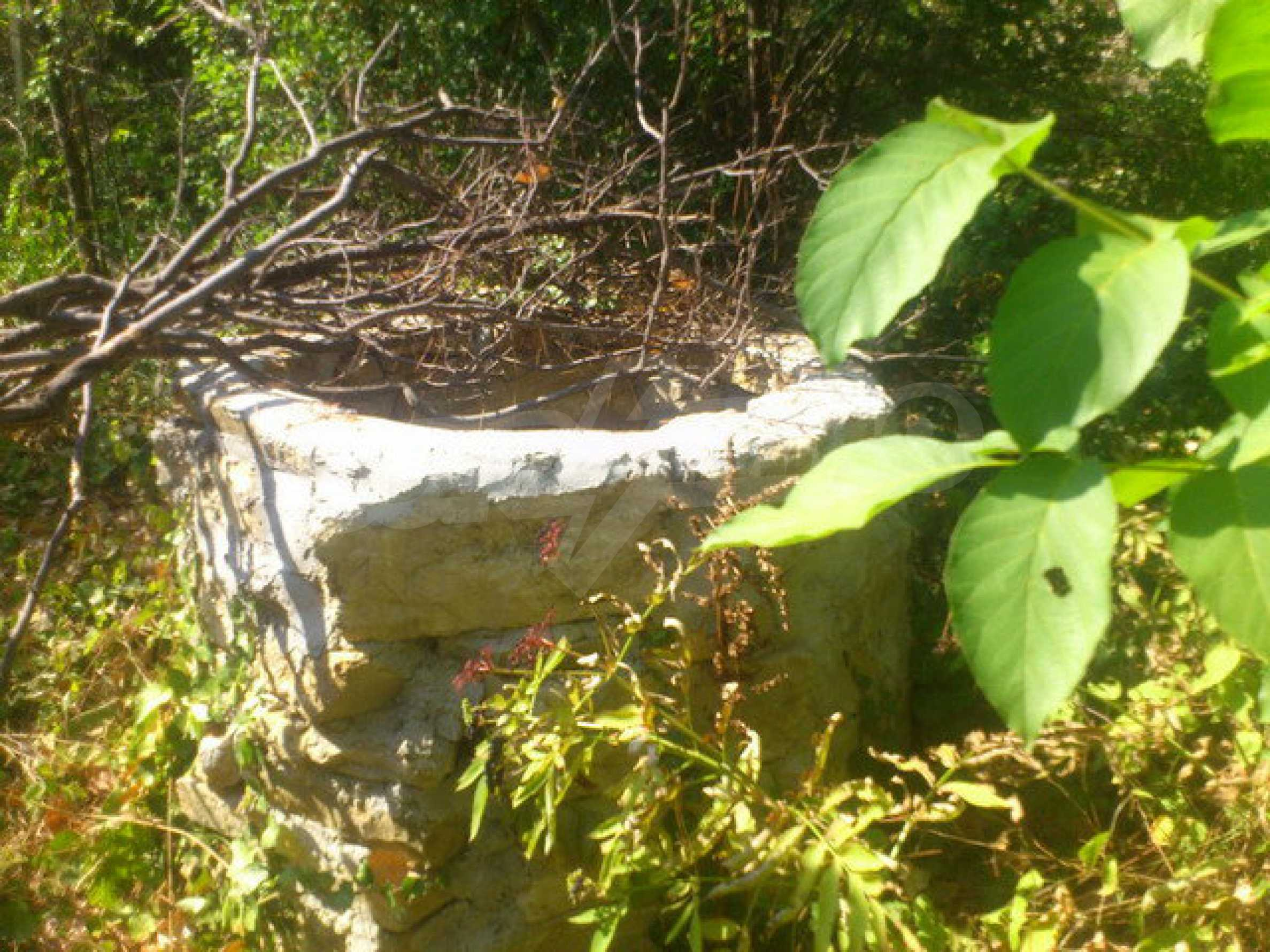 Plot of land in a village 30 km. from Veliko Tarnovo 17