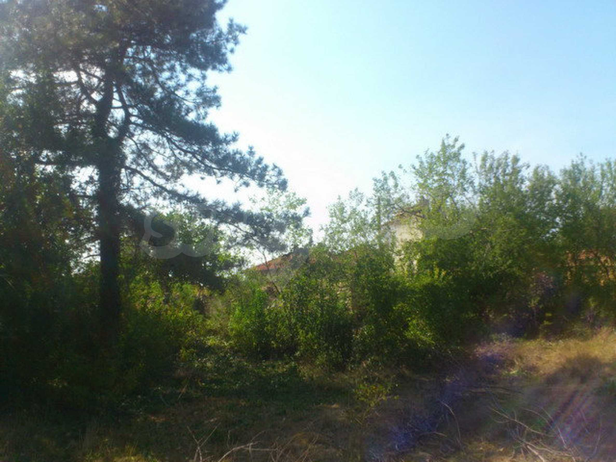 Plot of land in a village 30 km. from Veliko Tarnovo 7