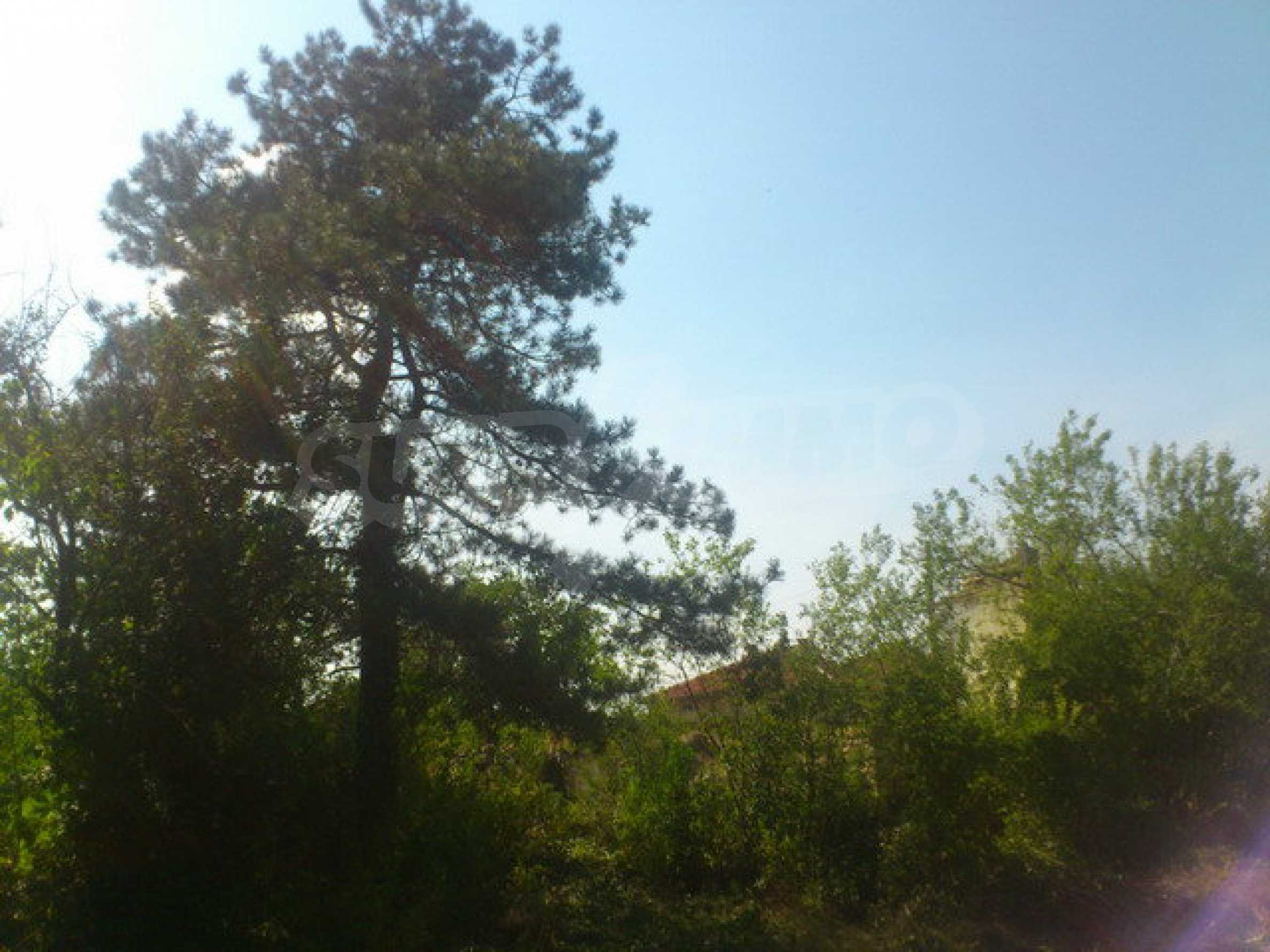 Plot of land in a village 30 km. from Veliko Tarnovo 8