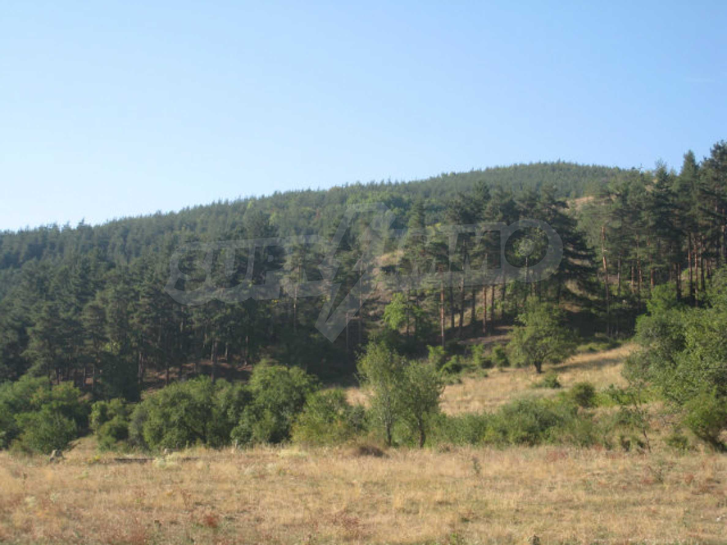Regulated plot of land in a quiet village near the sub-Balkan road 11