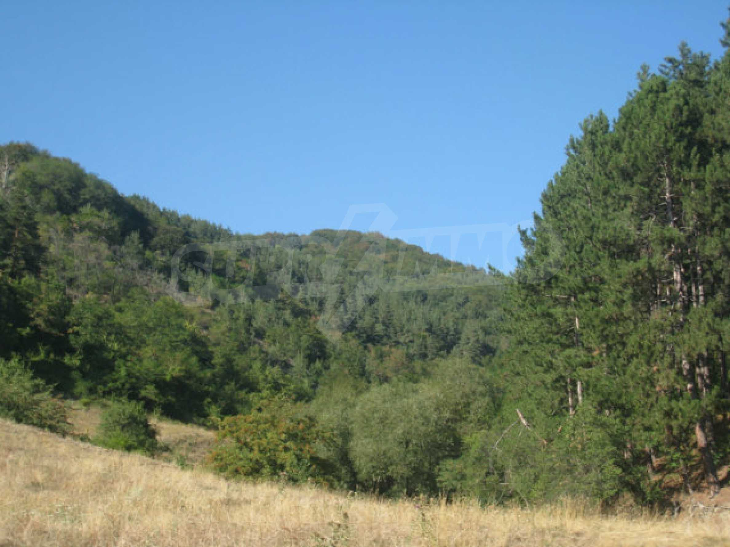 Regulated plot of land in a quiet village near the sub-Balkan road 12