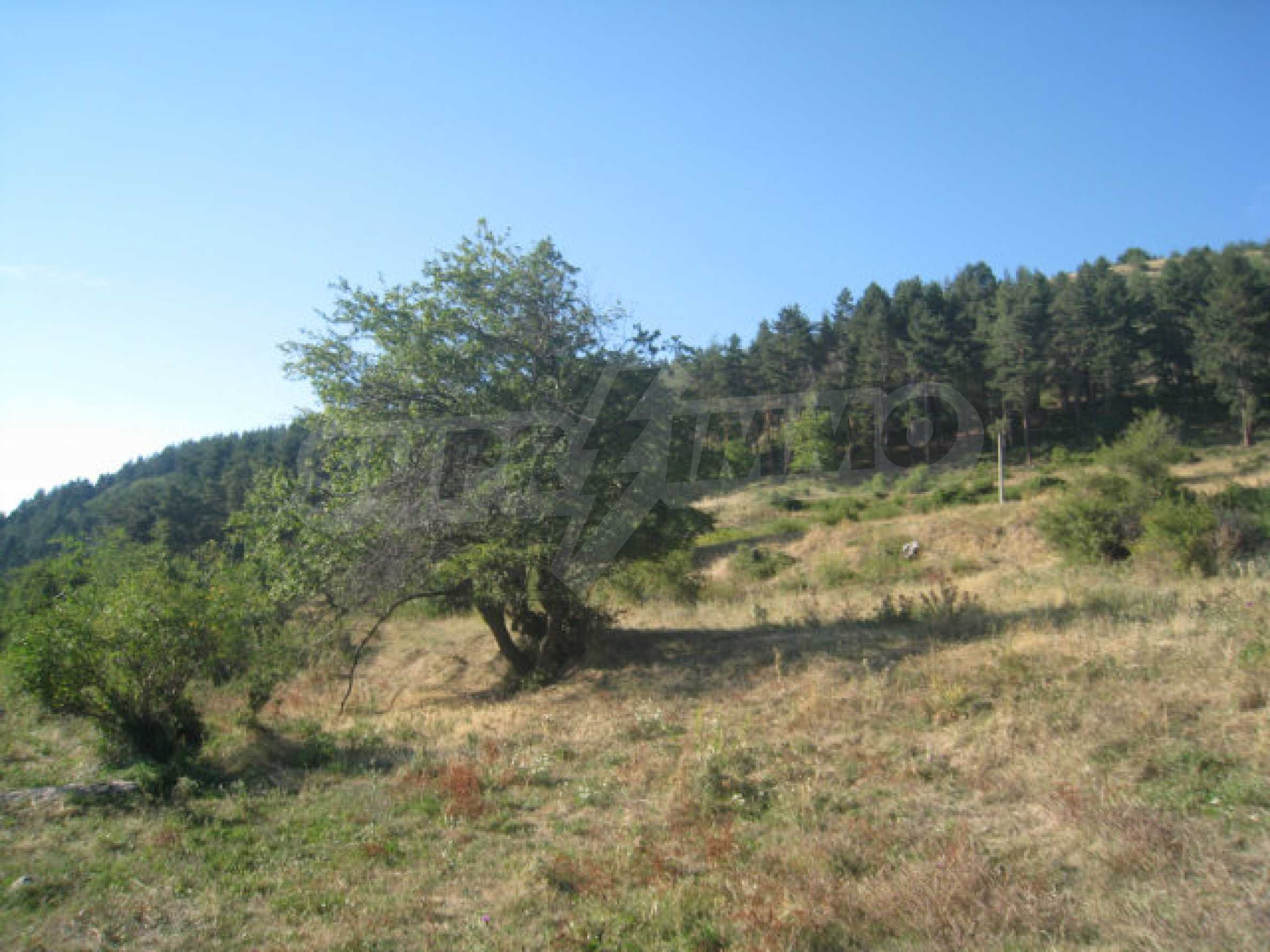 Regulated plot of land in a quiet village near the sub-Balkan road 13