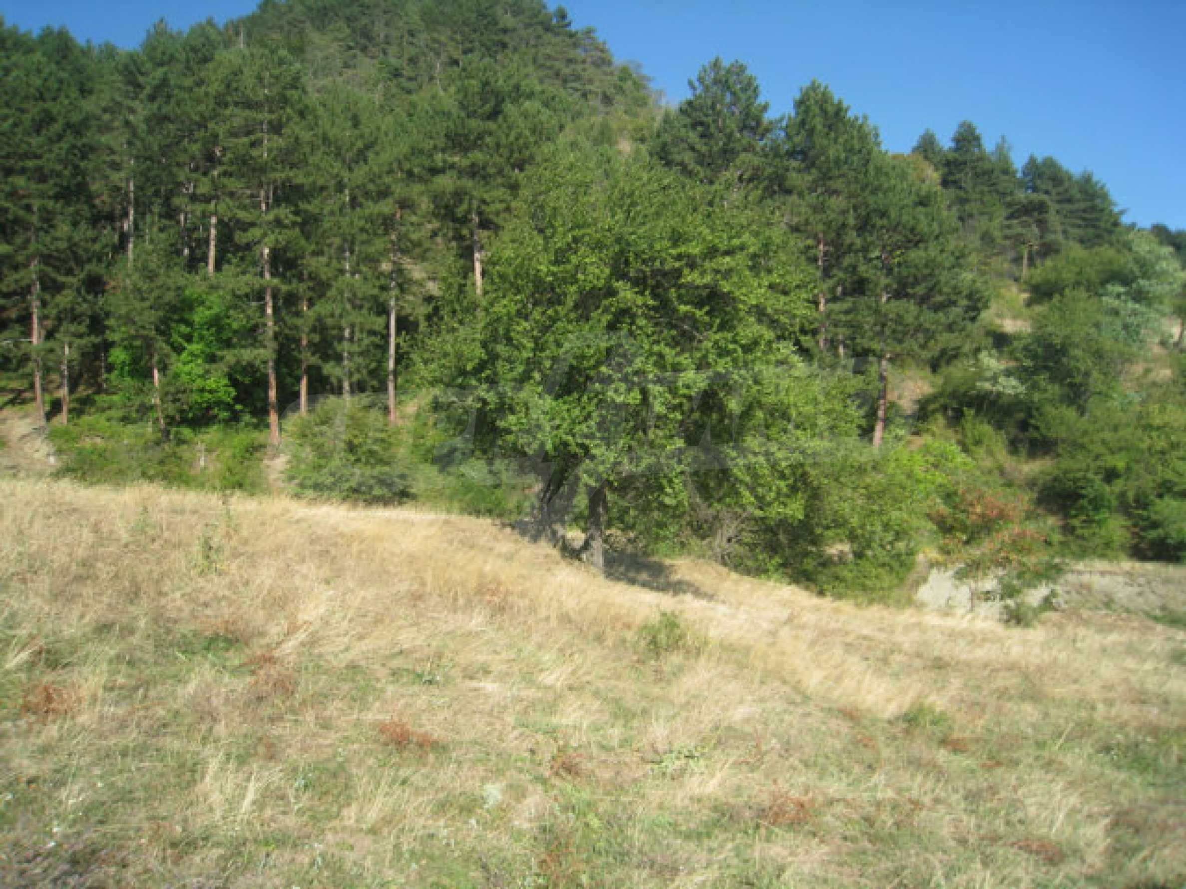 Regulated plot of land in a quiet village near the sub-Balkan road 16