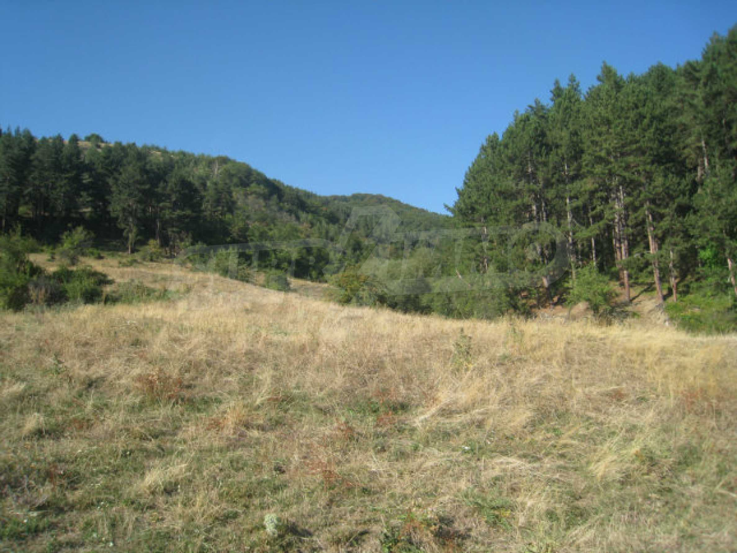 Regulated plot of land in a quiet village near the sub-Balkan road 28