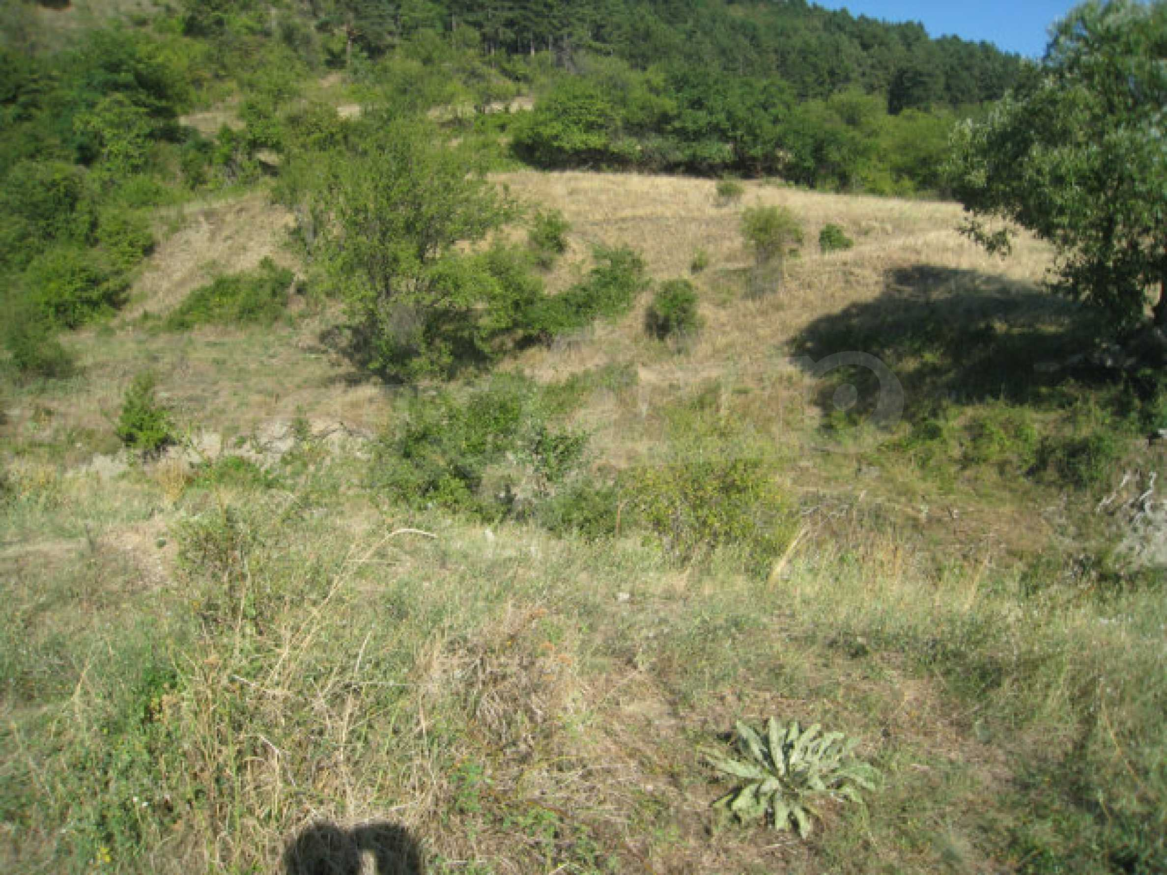 Regulated plot of land in a quiet village near the sub-Balkan road 2