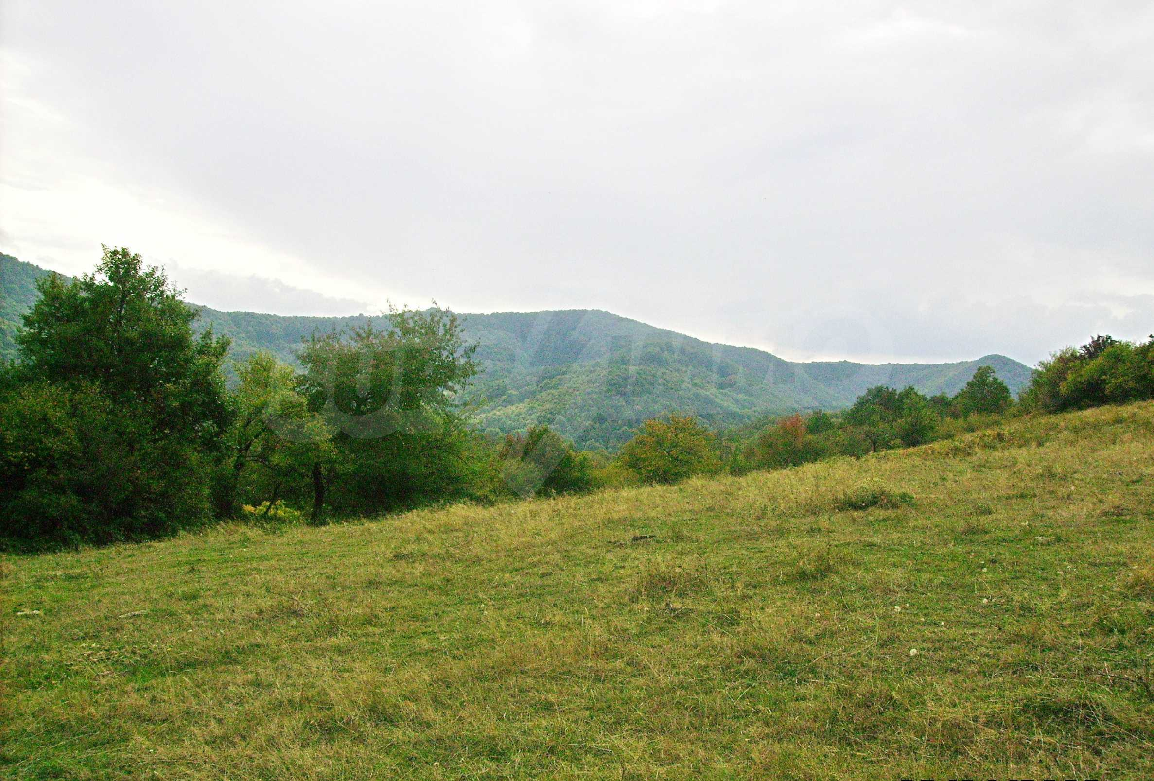 Large plot of land for sale located in the heart of Stara Planina Mountain