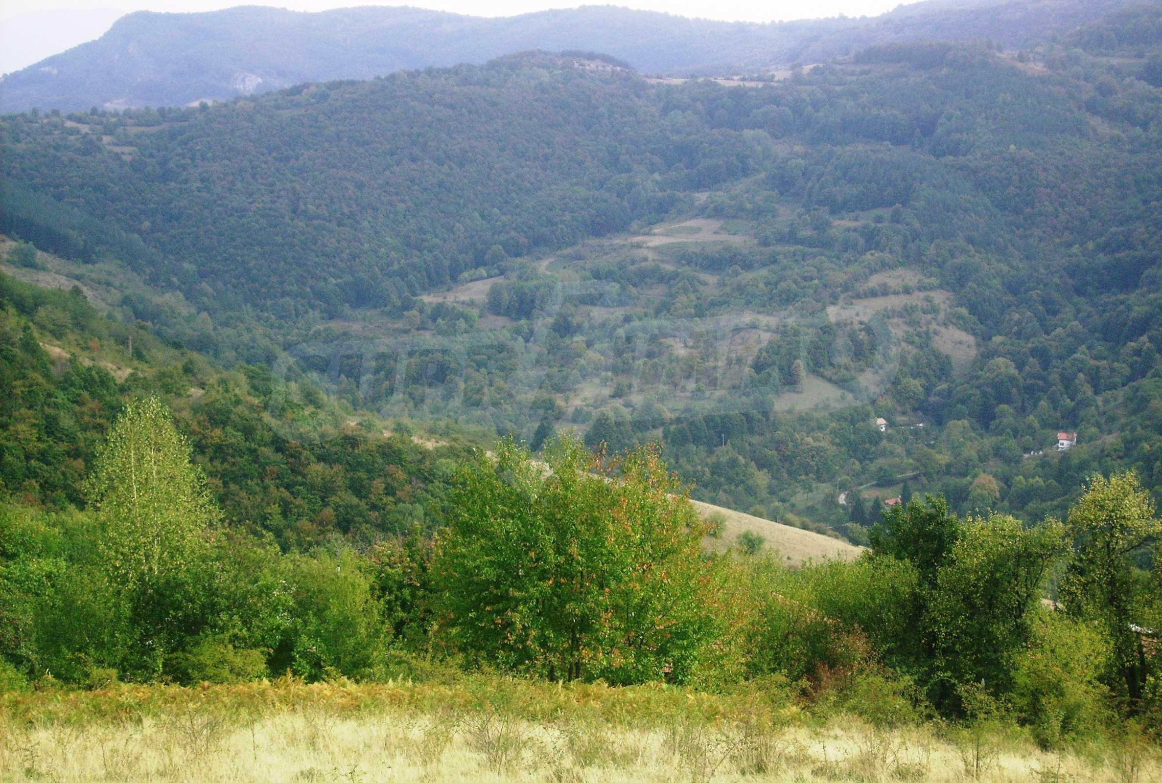 Large plot of land for sale located in the heart of Stara Planina Mountain 1