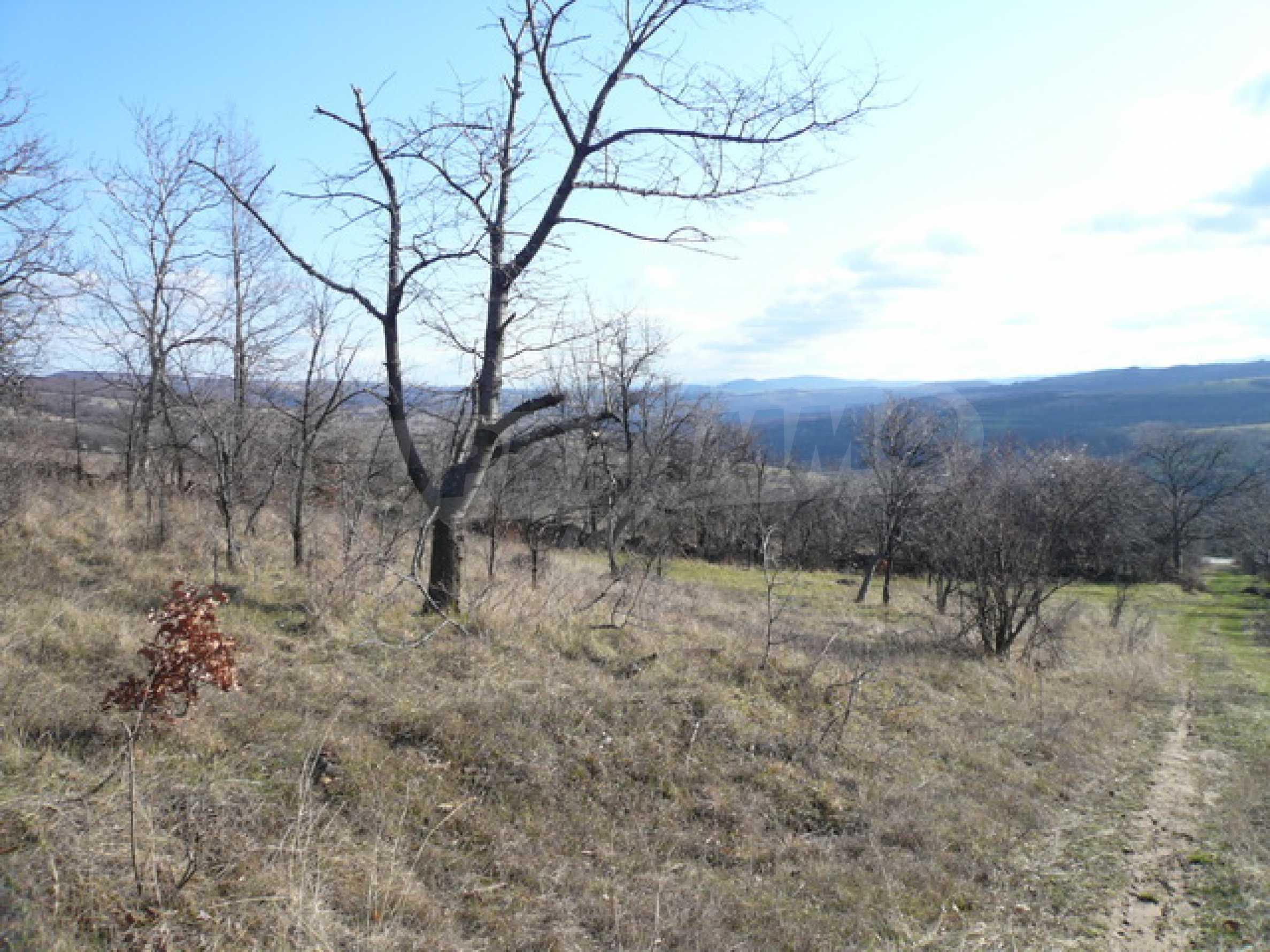 Продажа земли вблизи г. Габрово 1