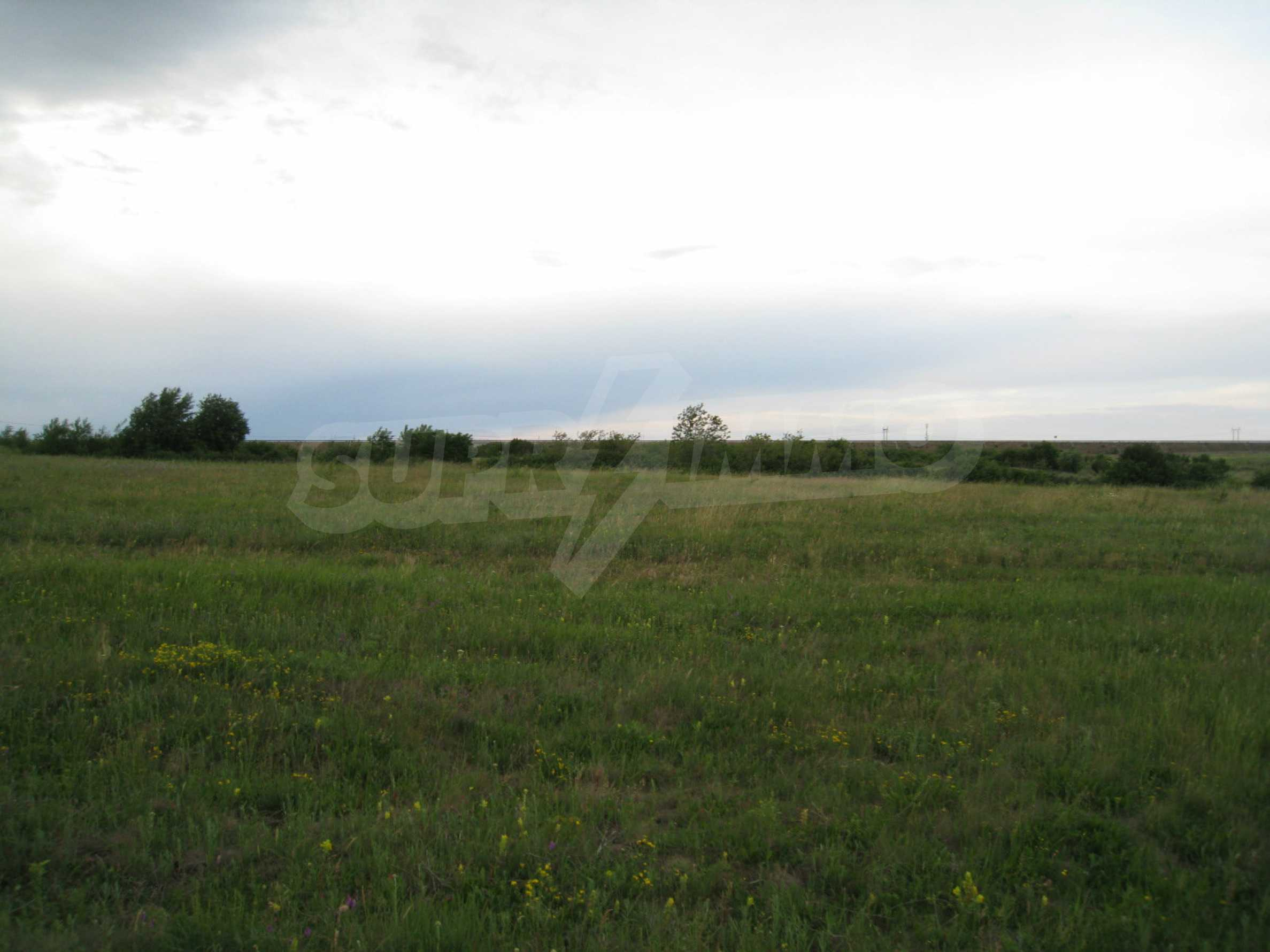 Ackerland in der Nähe eines Sees in Suhodol