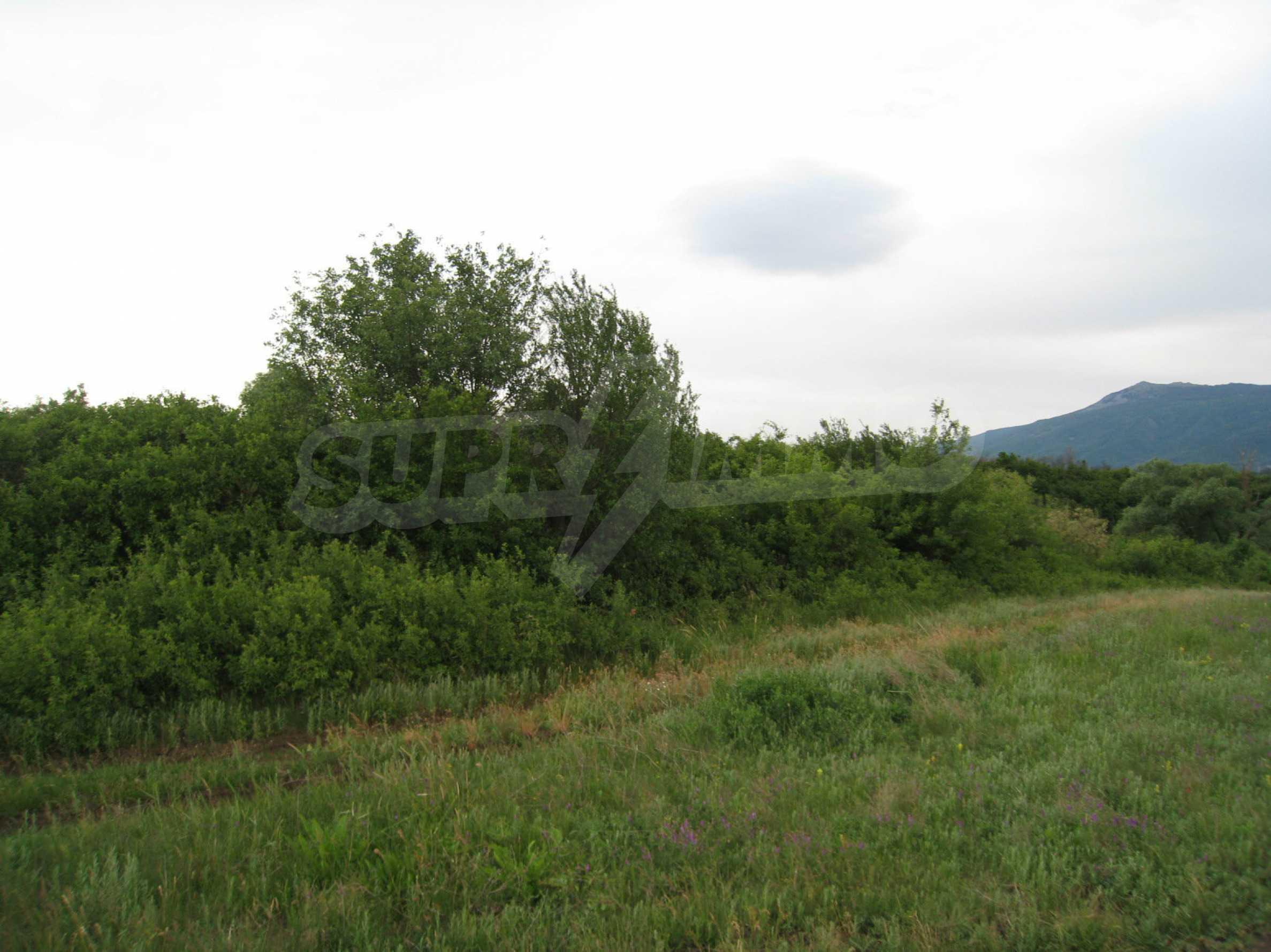 Ackerland in der Nähe eines Sees in Suhodol 11