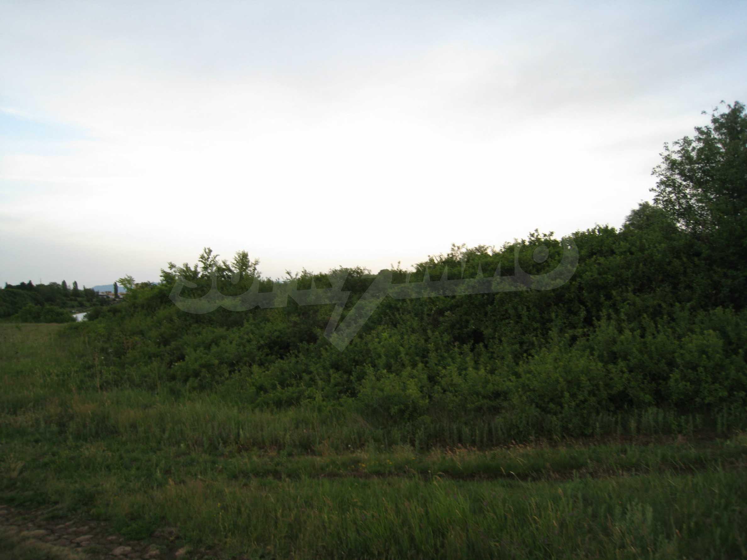Ackerland in der Nähe eines Sees in Suhodol 12
