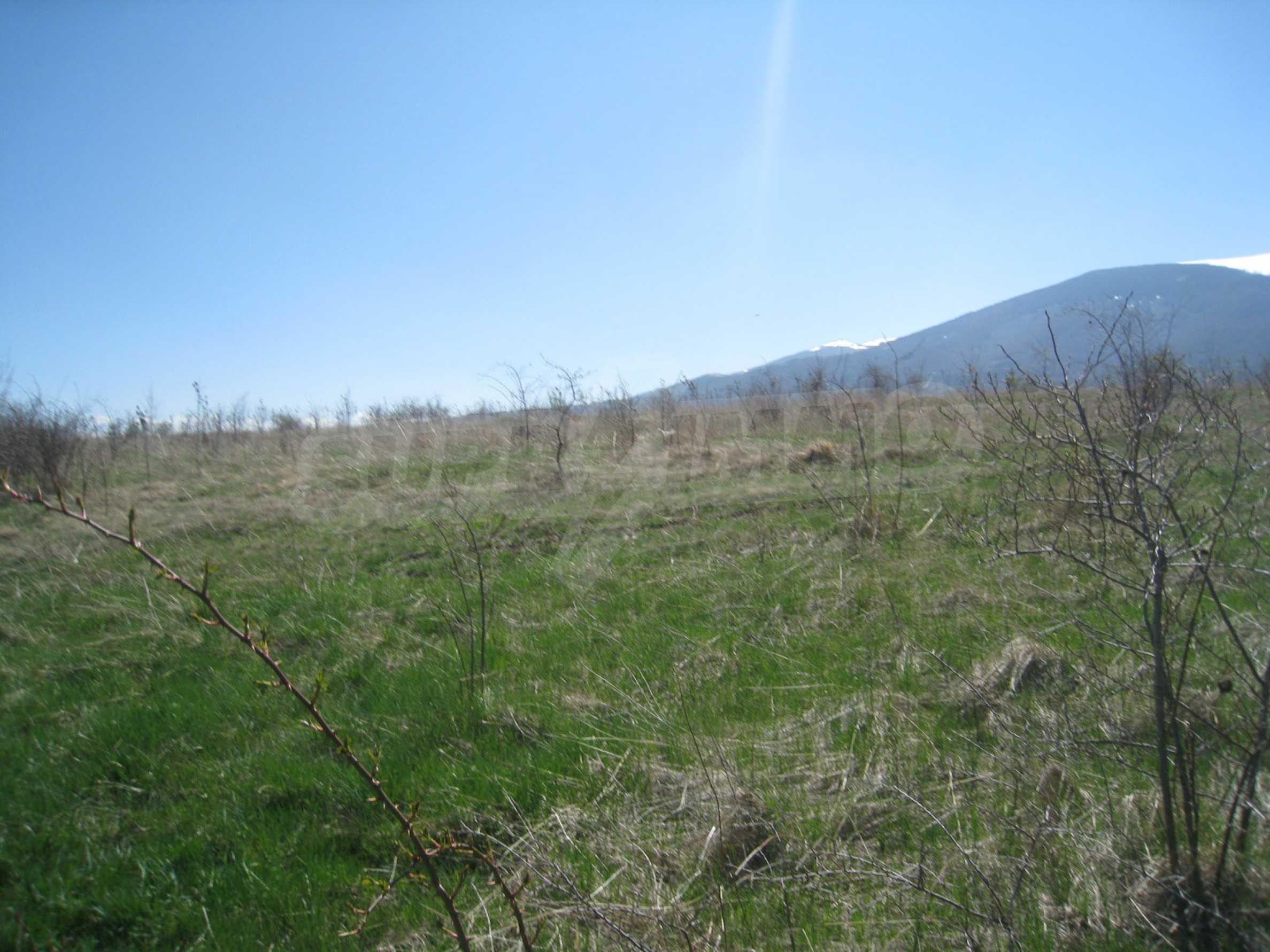 Reguliertes Grundstück für den Bau eines Privathauses oder einer Villa in der Nähe von Sofia 7