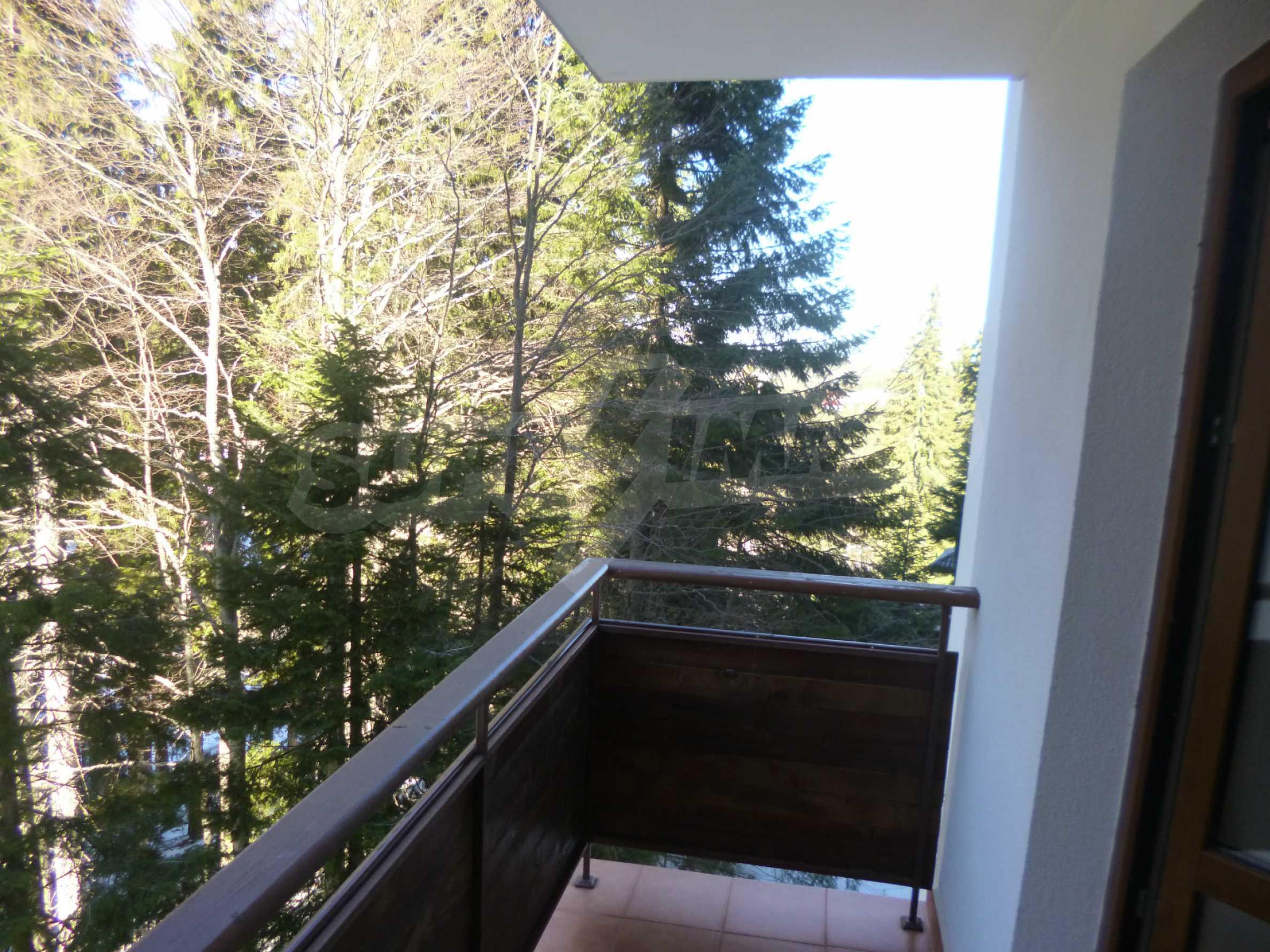 Cozy apartment near the ski slopes of Pamporovo 4