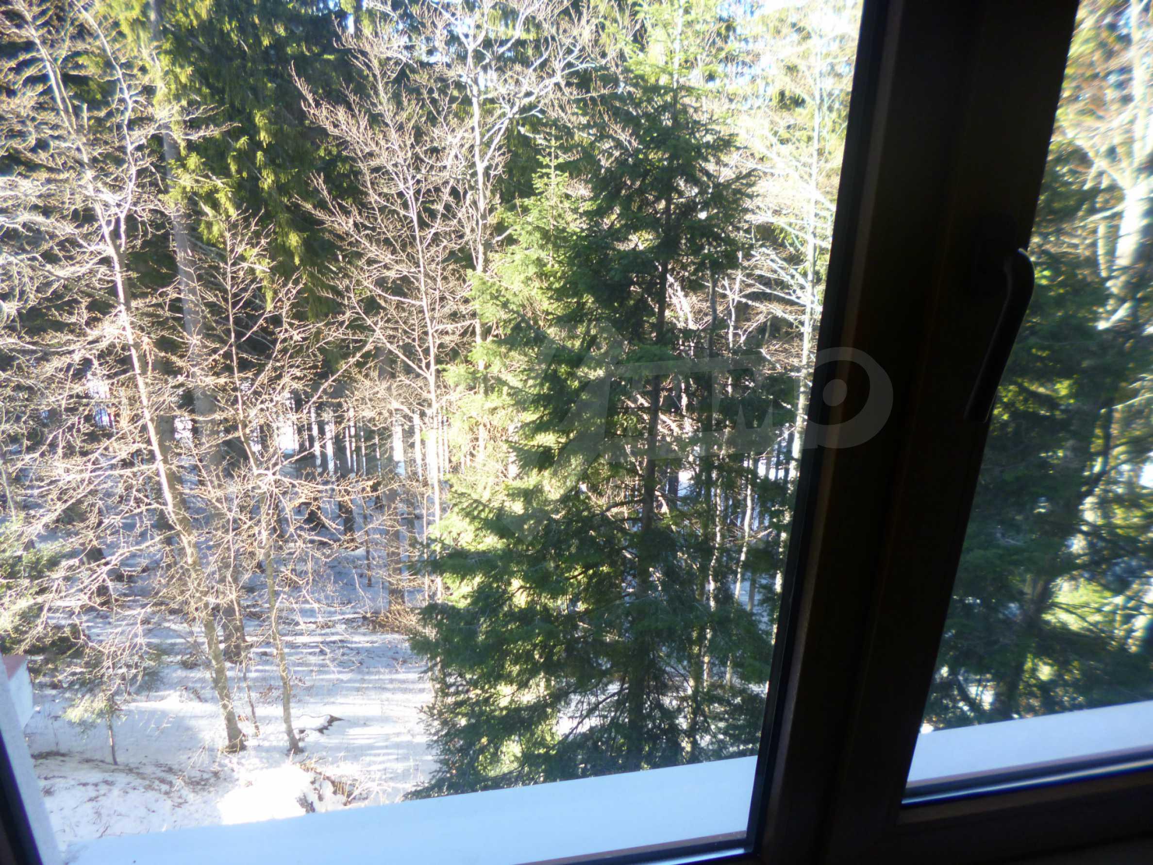 Cozy apartment near the ski slopes of Pamporovo 8