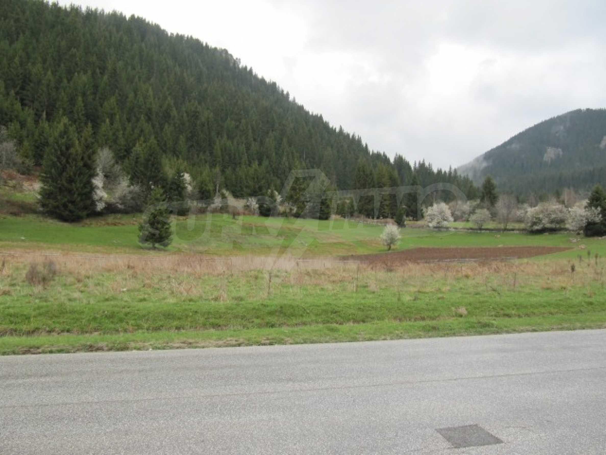 Голям парцел в регулация в Смолян и на 10 км от Пампорово  1