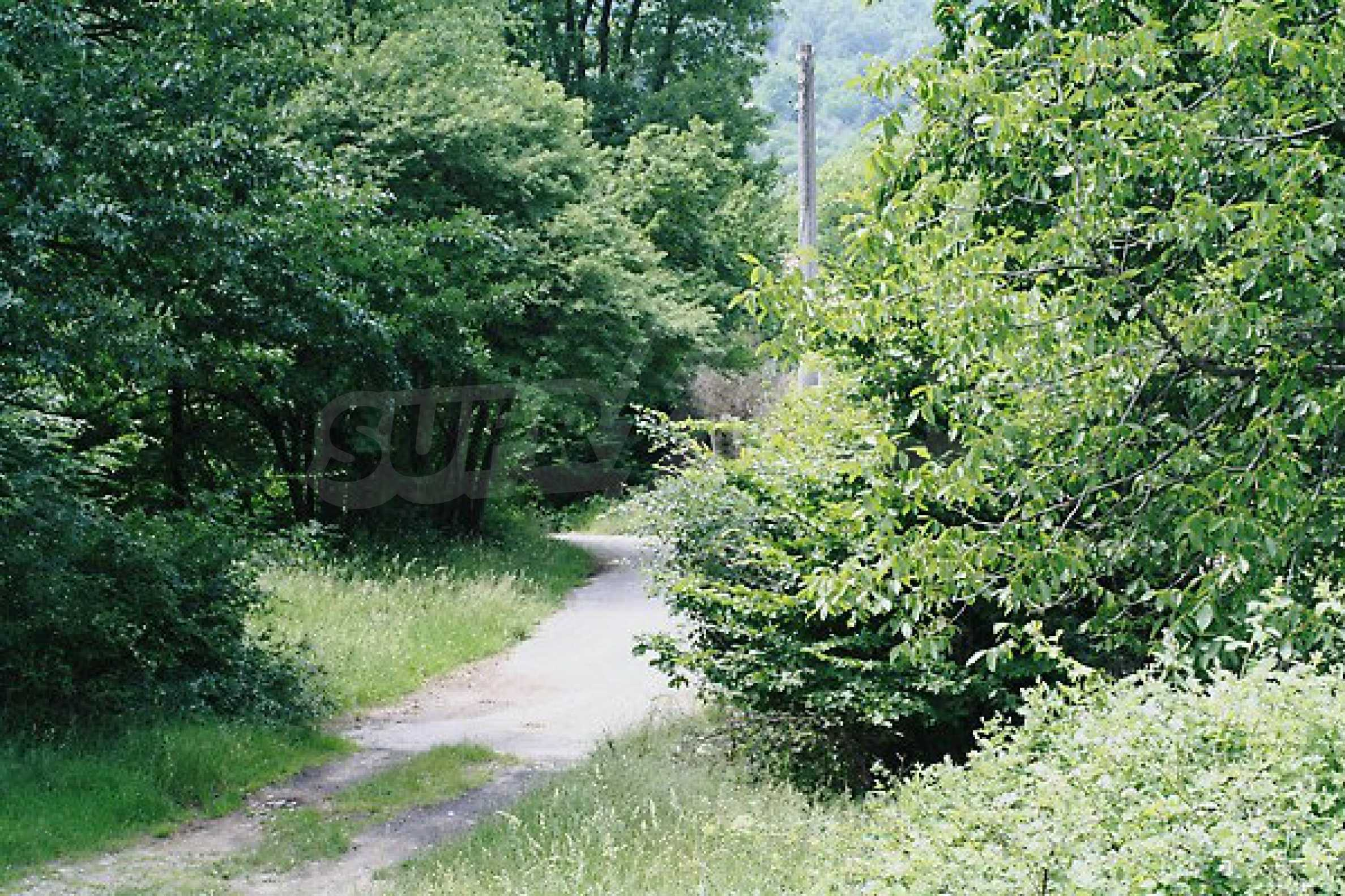 Large plot of land located near town Gabrovo 11