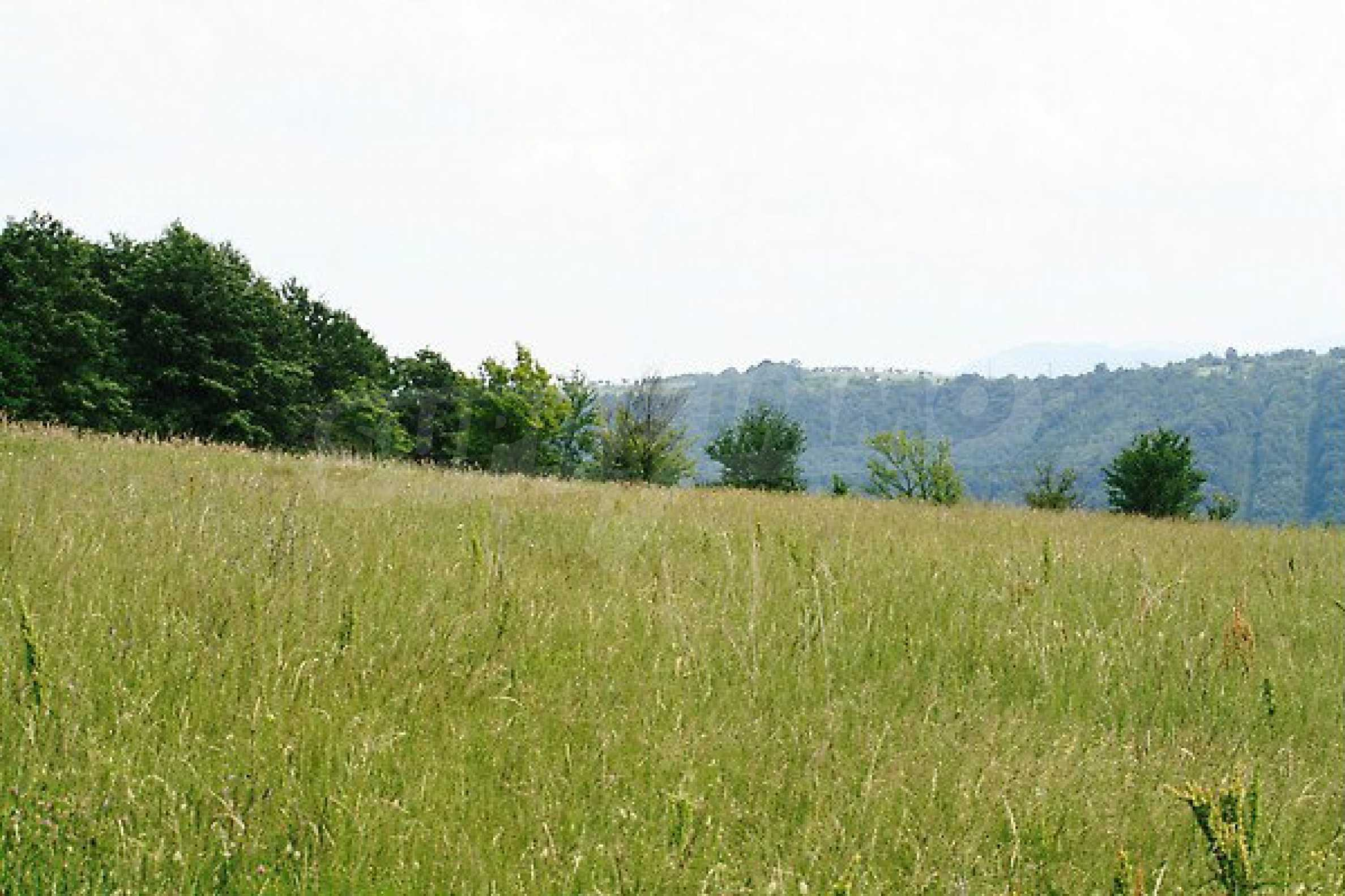 Large plot of land located near town Gabrovo 1