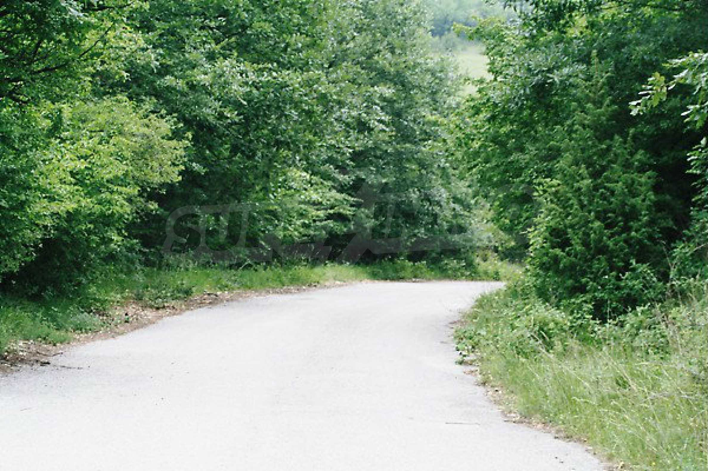 Large plot of land located near town Gabrovo 27