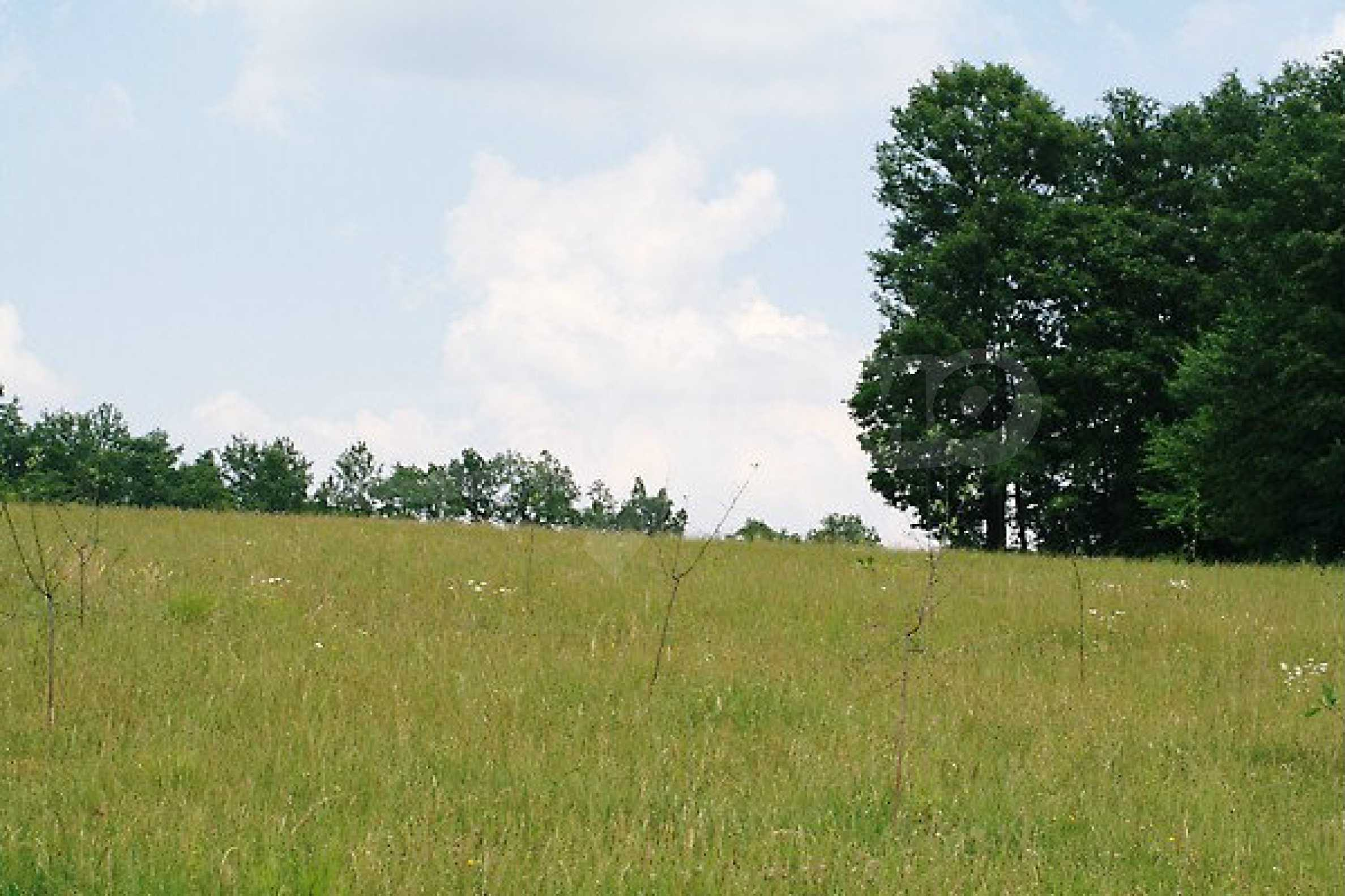 Large plot of land located near town Gabrovo 4