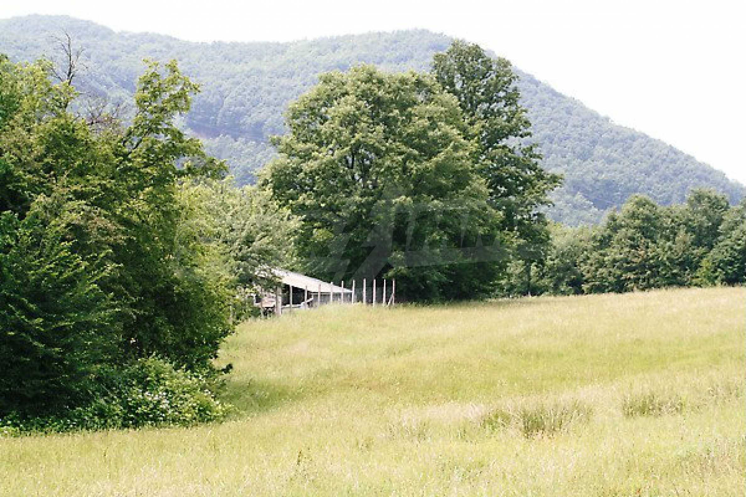 Large plot of land located near town Gabrovo 6