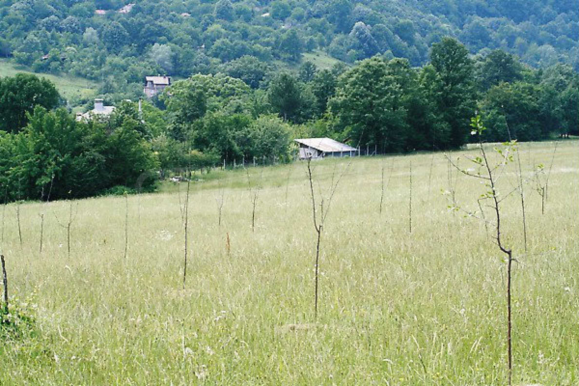 Large plot of land located near town Gabrovo 7