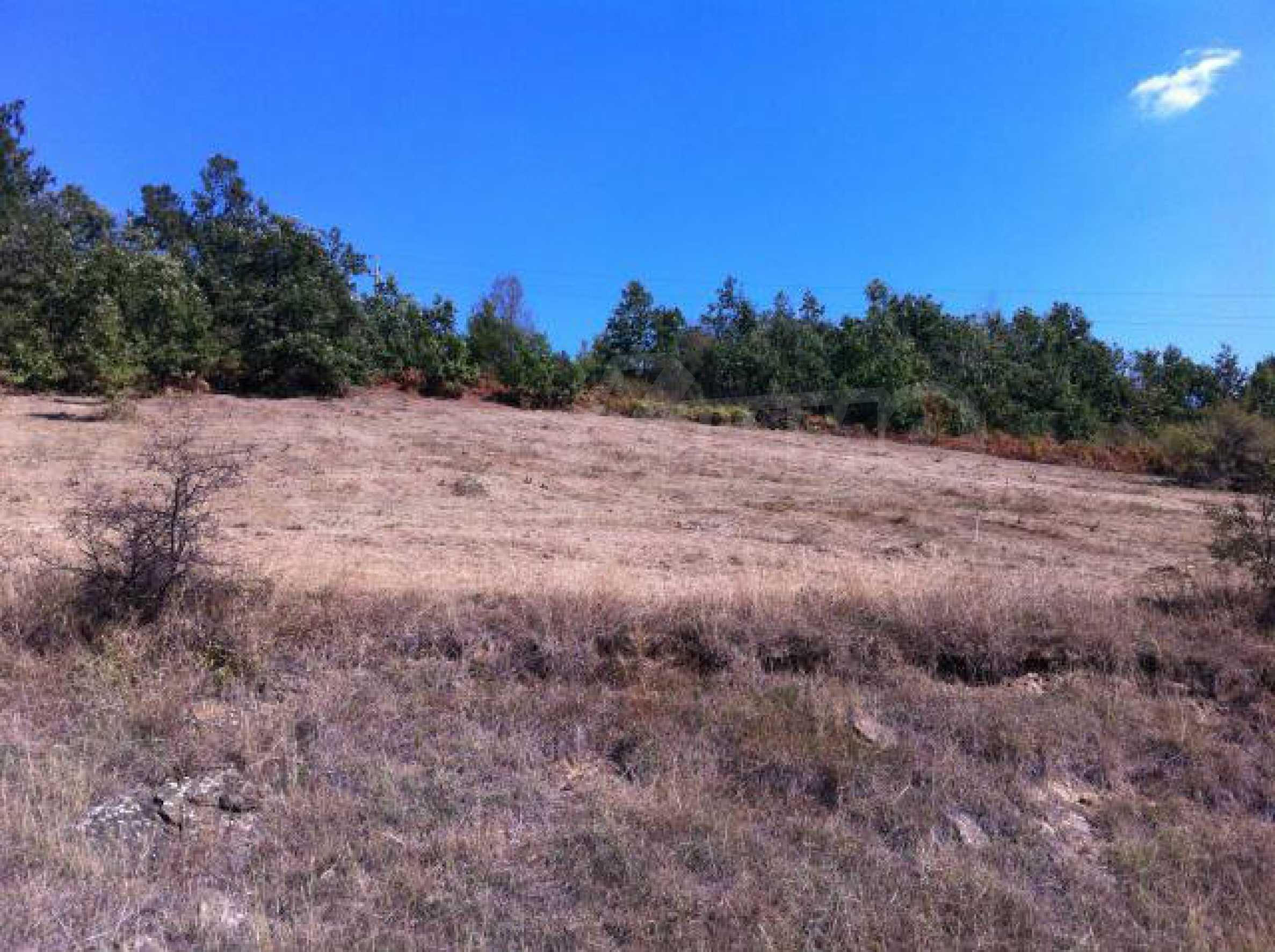 Baugrundstück im ethnografischen Schutzgebiet des Dorfes Bozhentsi 4