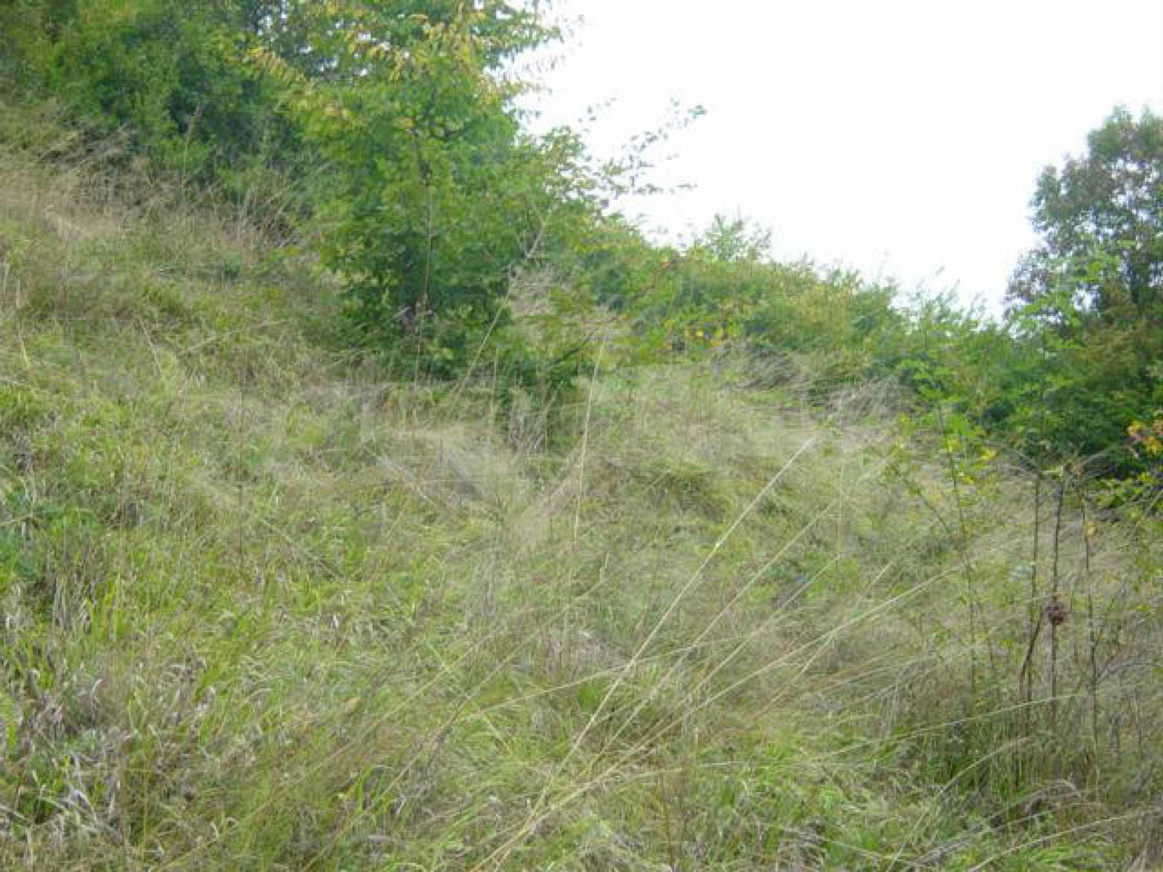 Ackerland inmitten der wunderschönen Natur des Teteven Balkan 6