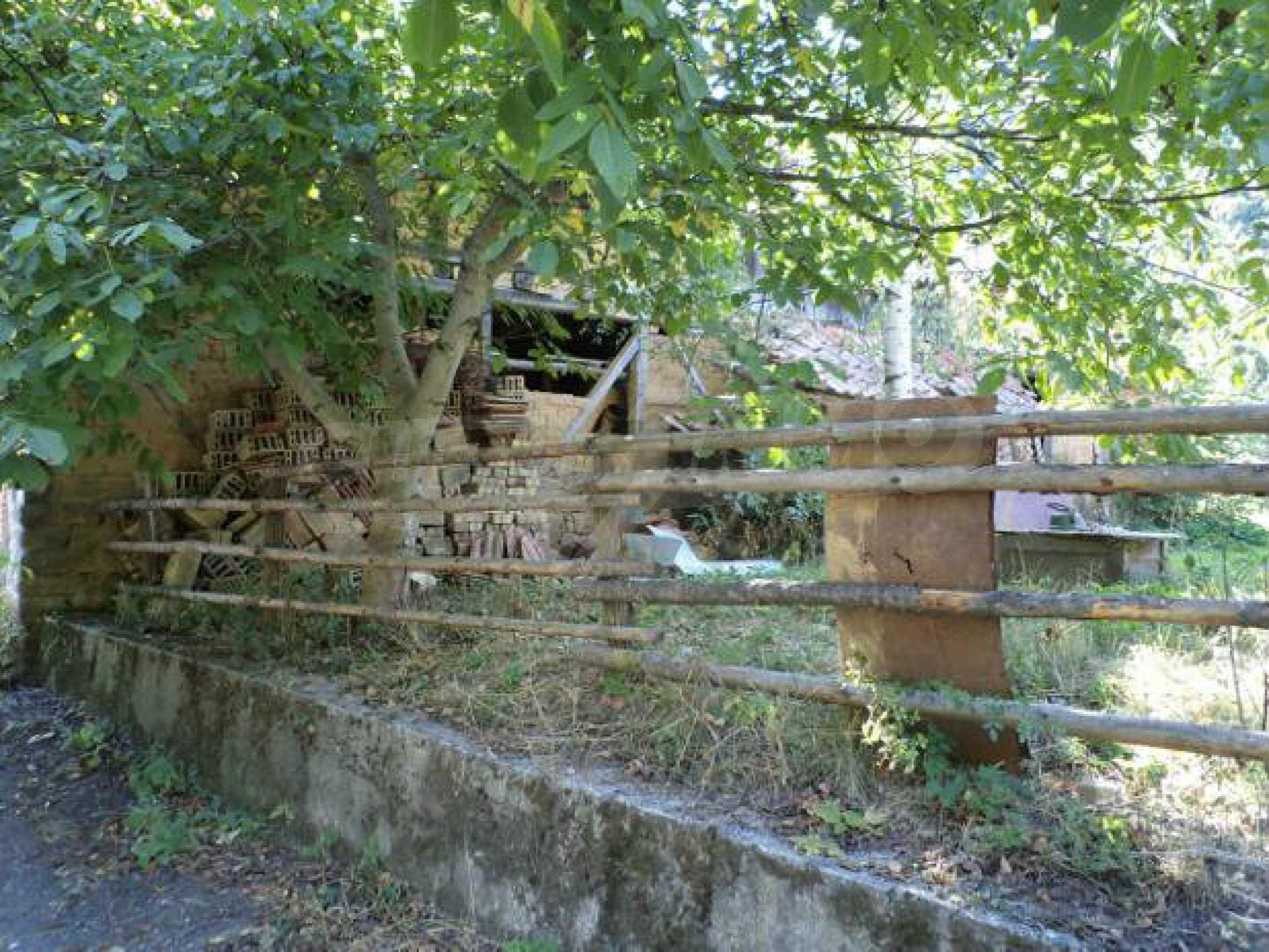Spacious house near Elena 5