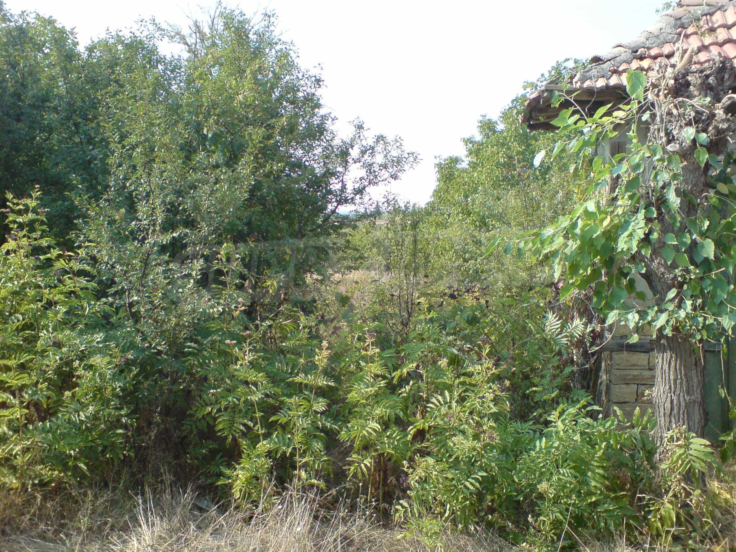 Einstöckiges Backsteinhaus 40 km. von Veliko Tarnovo 11