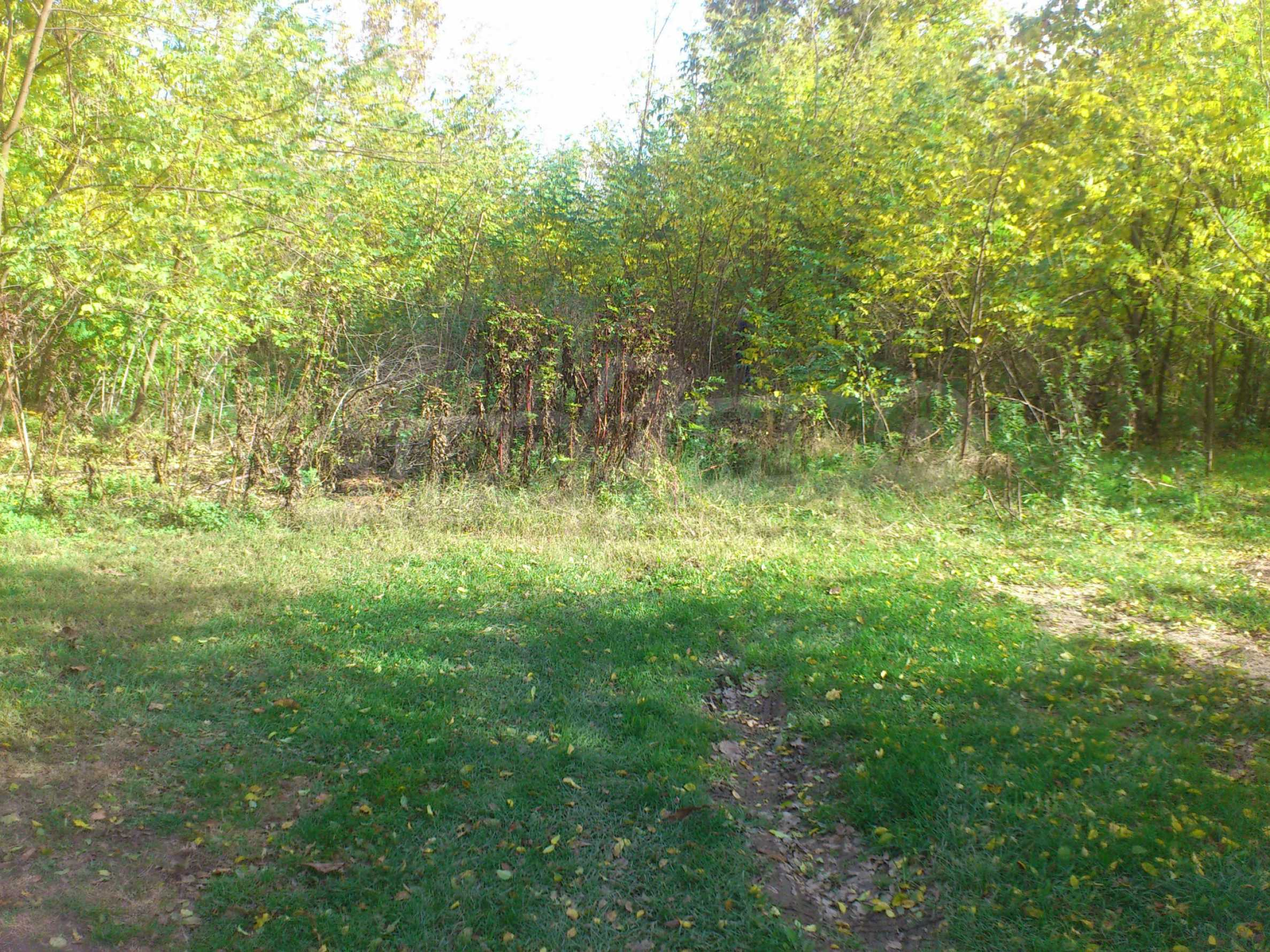 Regulated plot of land in a village just 17 km. from Veliko Tarnovo 6